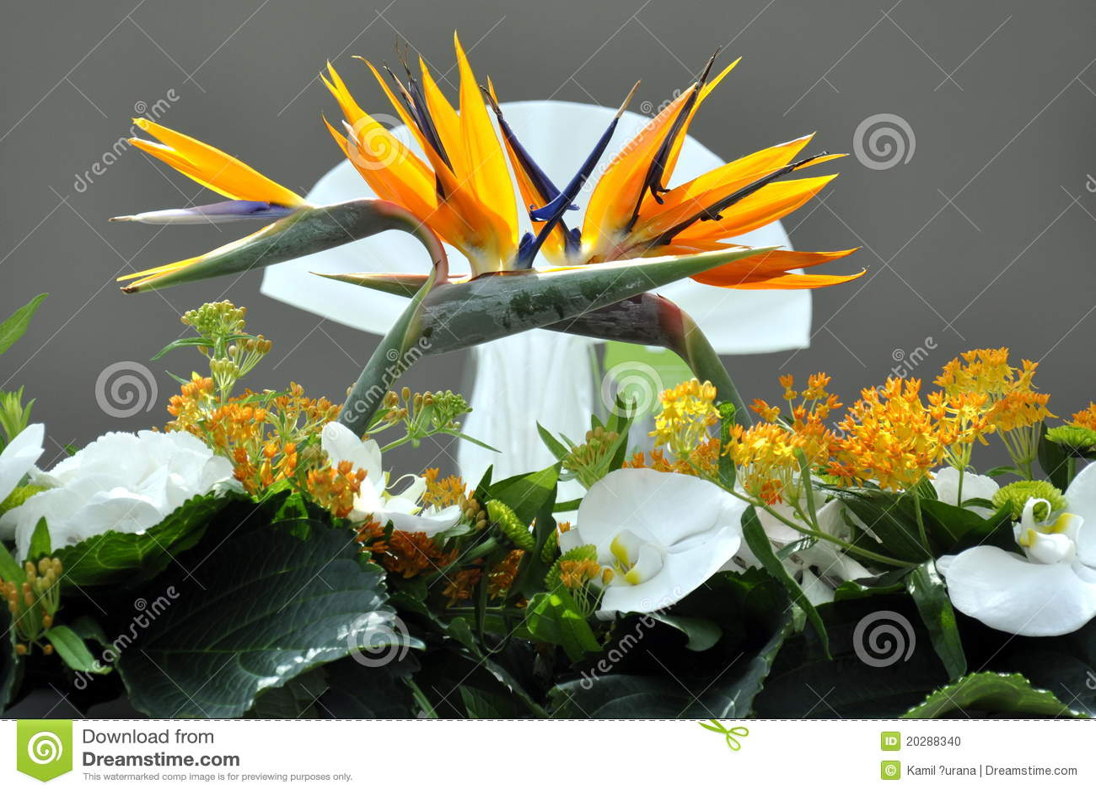 Dekorativt gifta sig för blommor