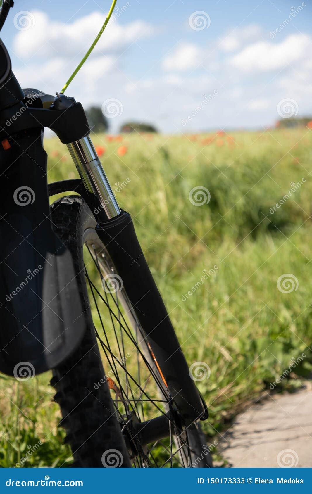 Del av framhjulet med resors mot bakgrunden av fältet för vårgräsplanråg och de röda vallmo