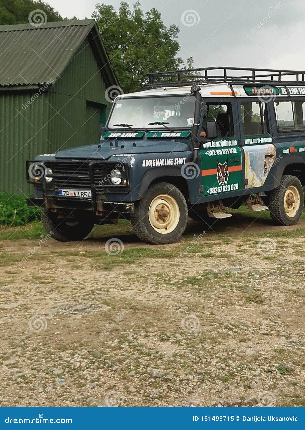 Del jeep del camino para la naturaleza salvaje