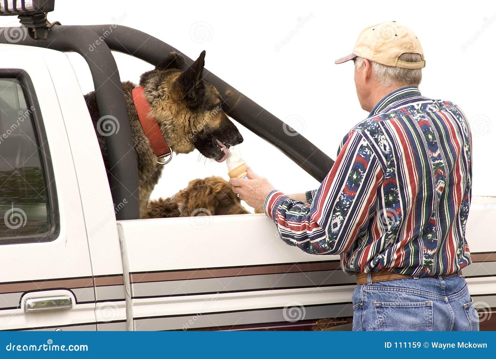 Deleite do cão
