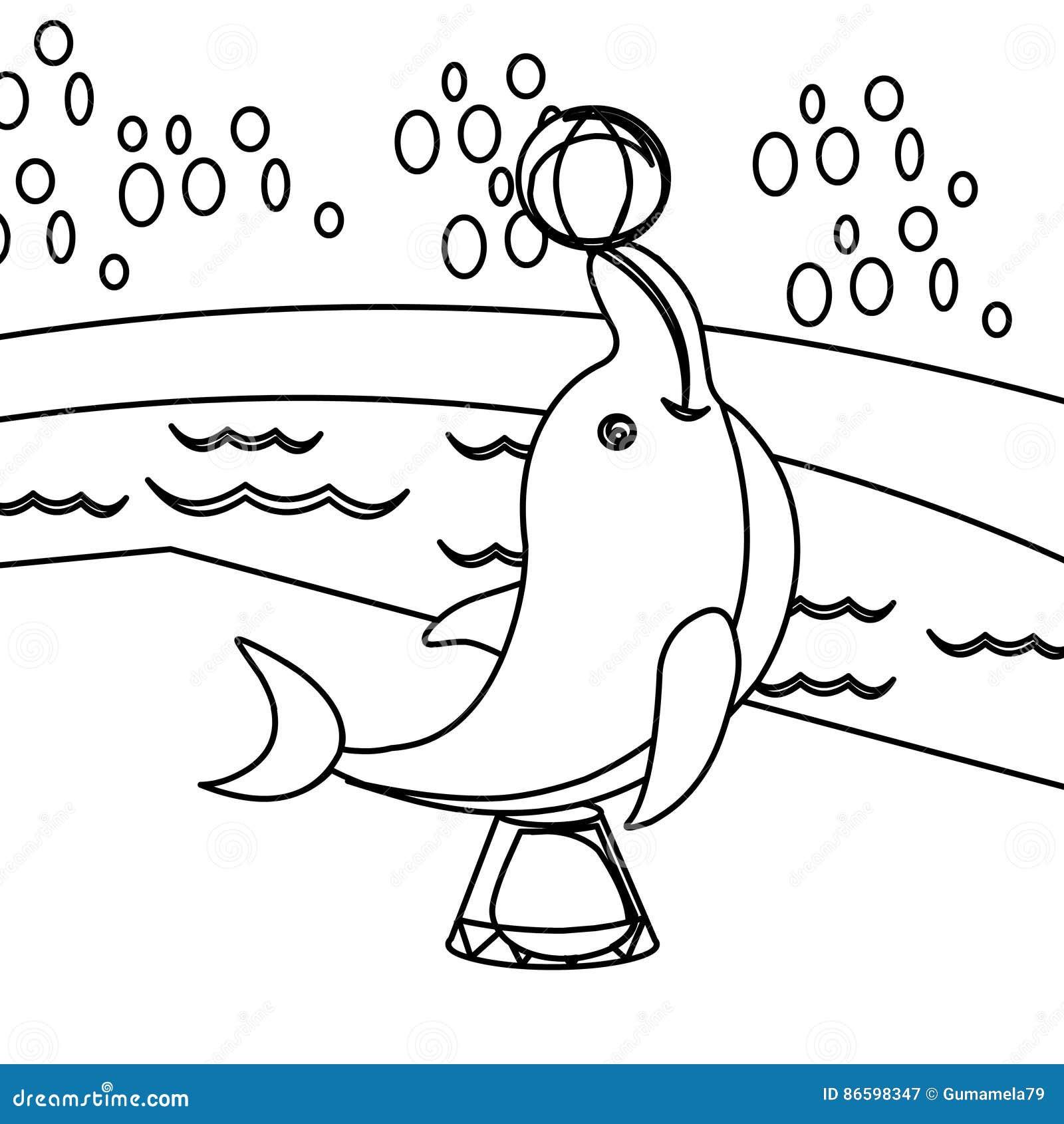Delfin kolorystyki strona