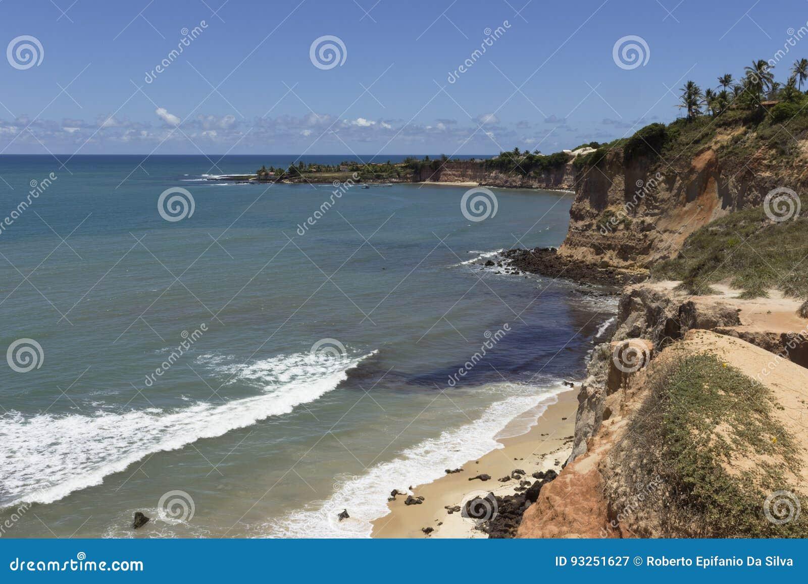 Delfin zatoczka - Natal Brazylia plaże