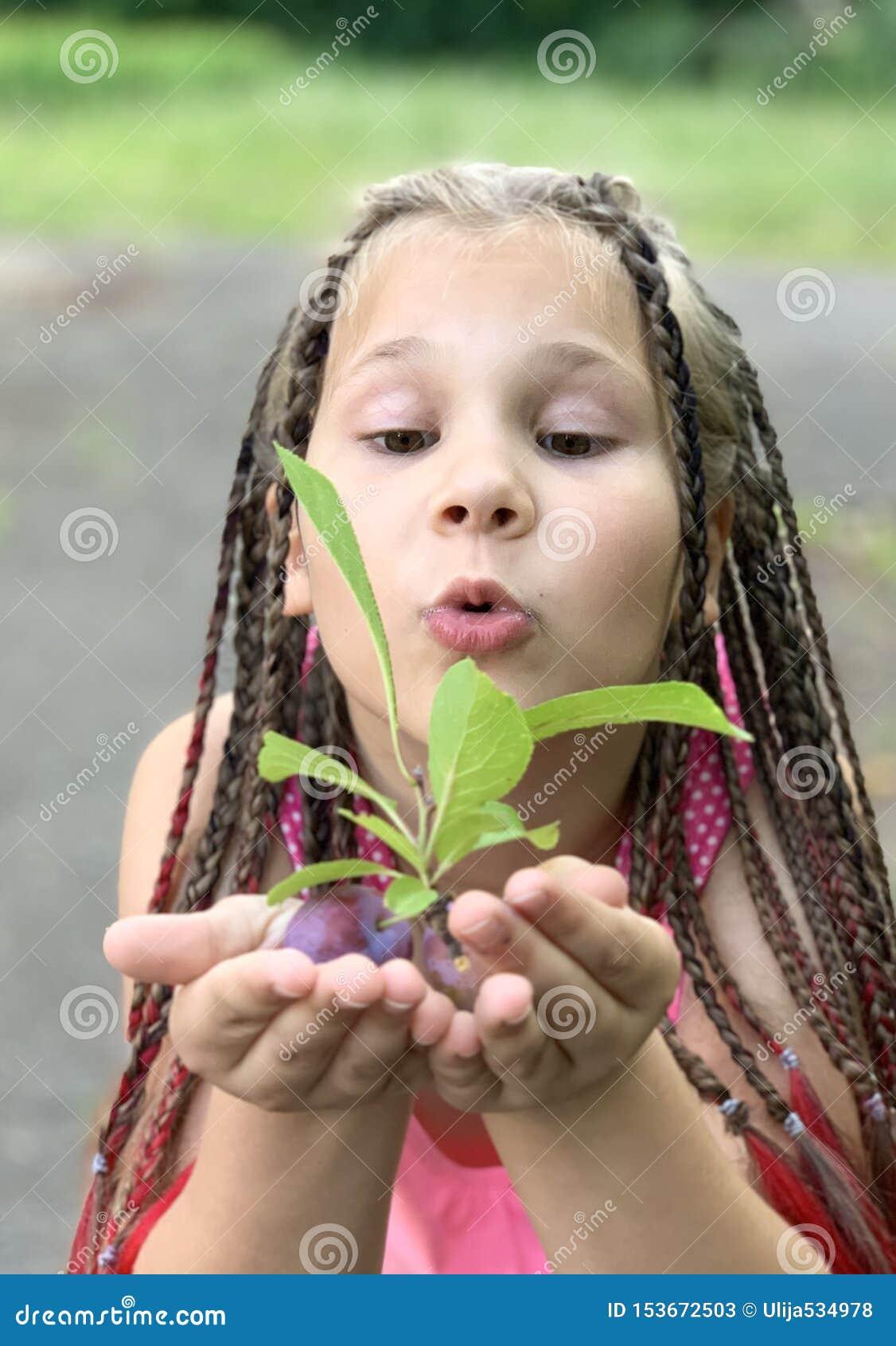 Delia concentr? Una muchacha con las coletas africanas come ciruelos