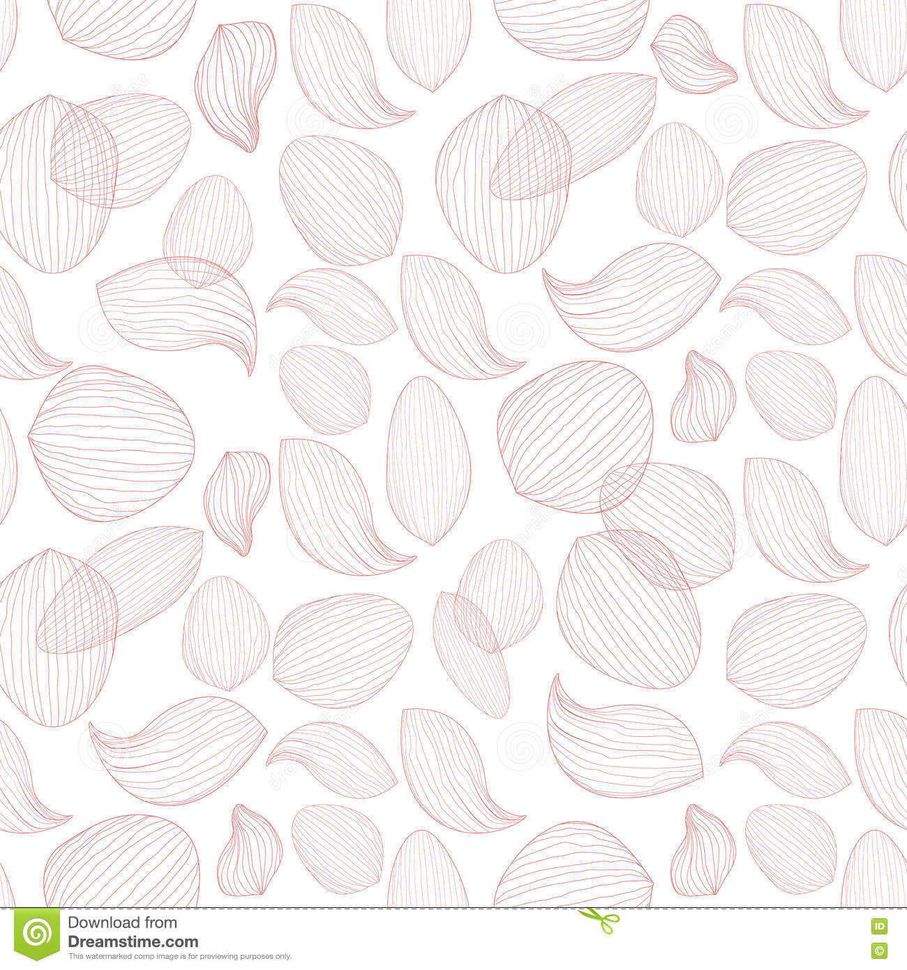 Delicate Lotus Flower Petals On White Background Outline Vector