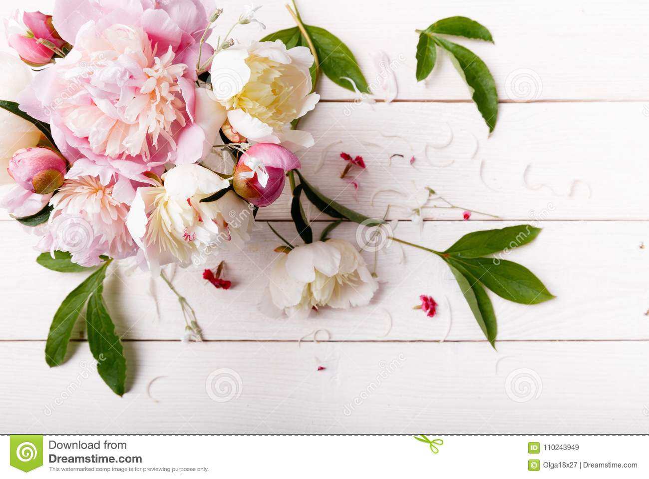 Delicate white pink peony with petals flowers and white ribbon on wooden board. Overhead top view, flat lay. Copy space. Birthday,