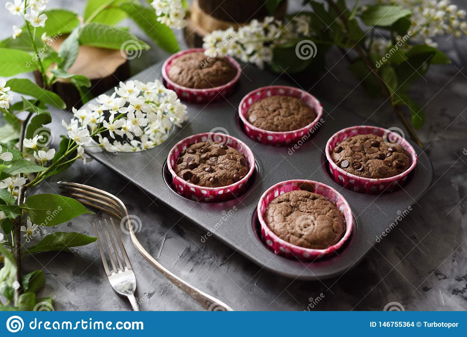 Delicious homemade chocolate muffins with bird cherry flowers on dark background