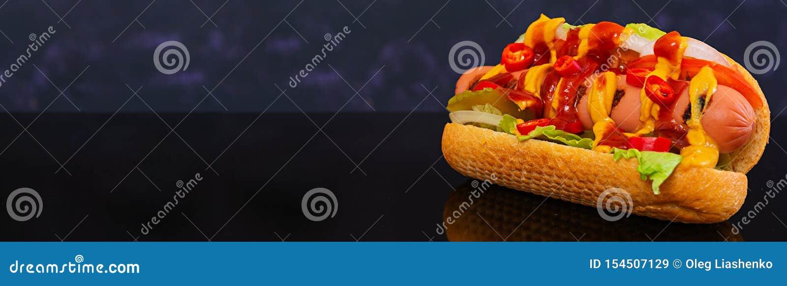 Delicious homemade hot dog on dark background. Banner