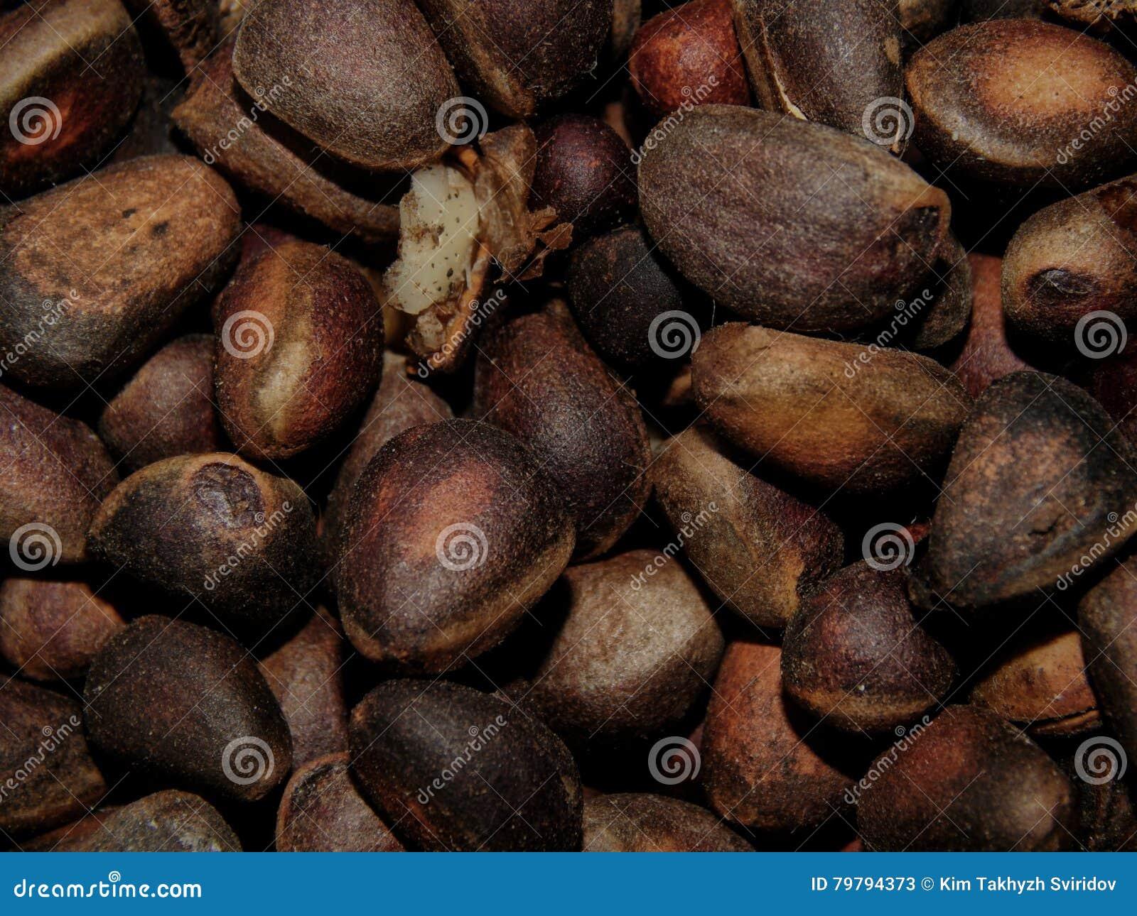 Delicious pine nuts