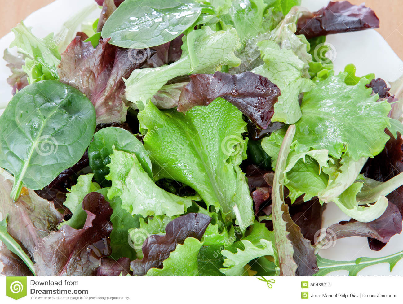 Delicious Salad Of Different Types Of Lettuce Leaves Stock Image