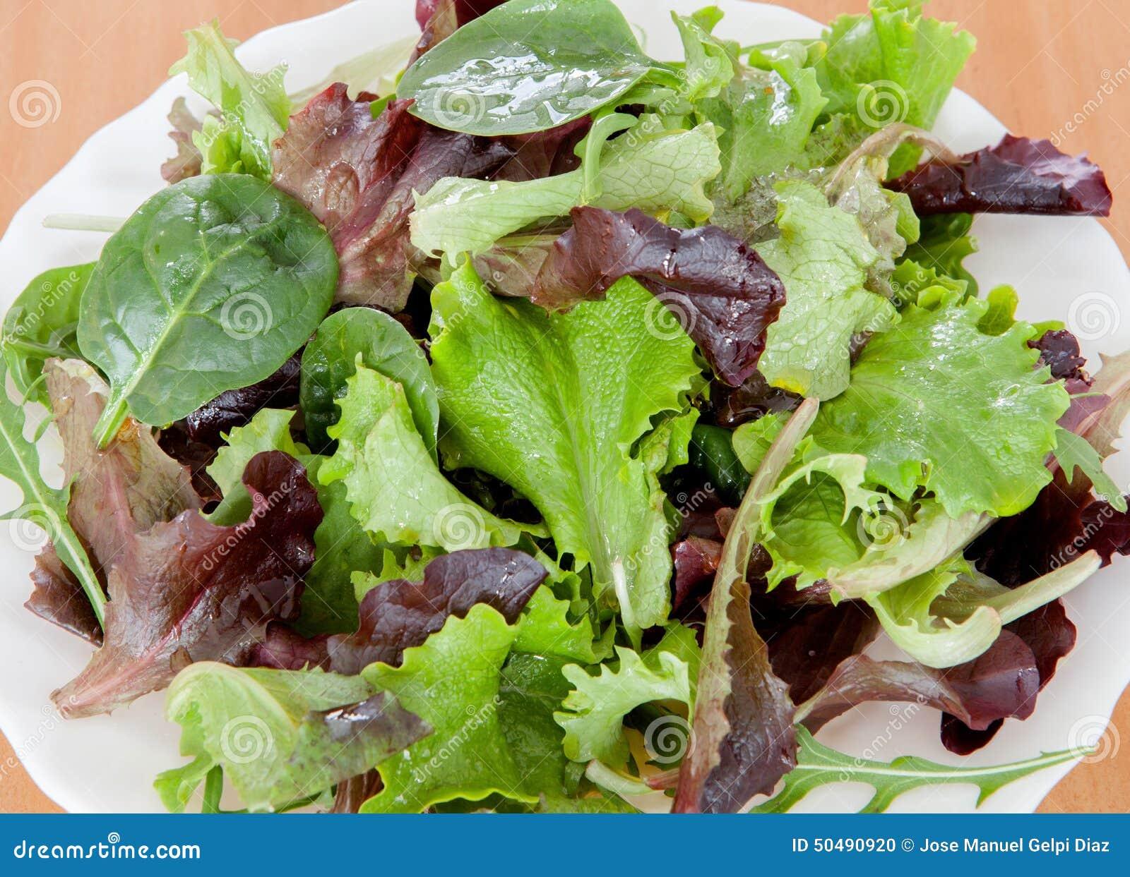 Листья салата фото и виды