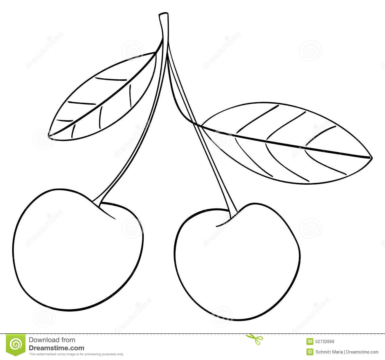 delightful garden  two cherries connected together with a