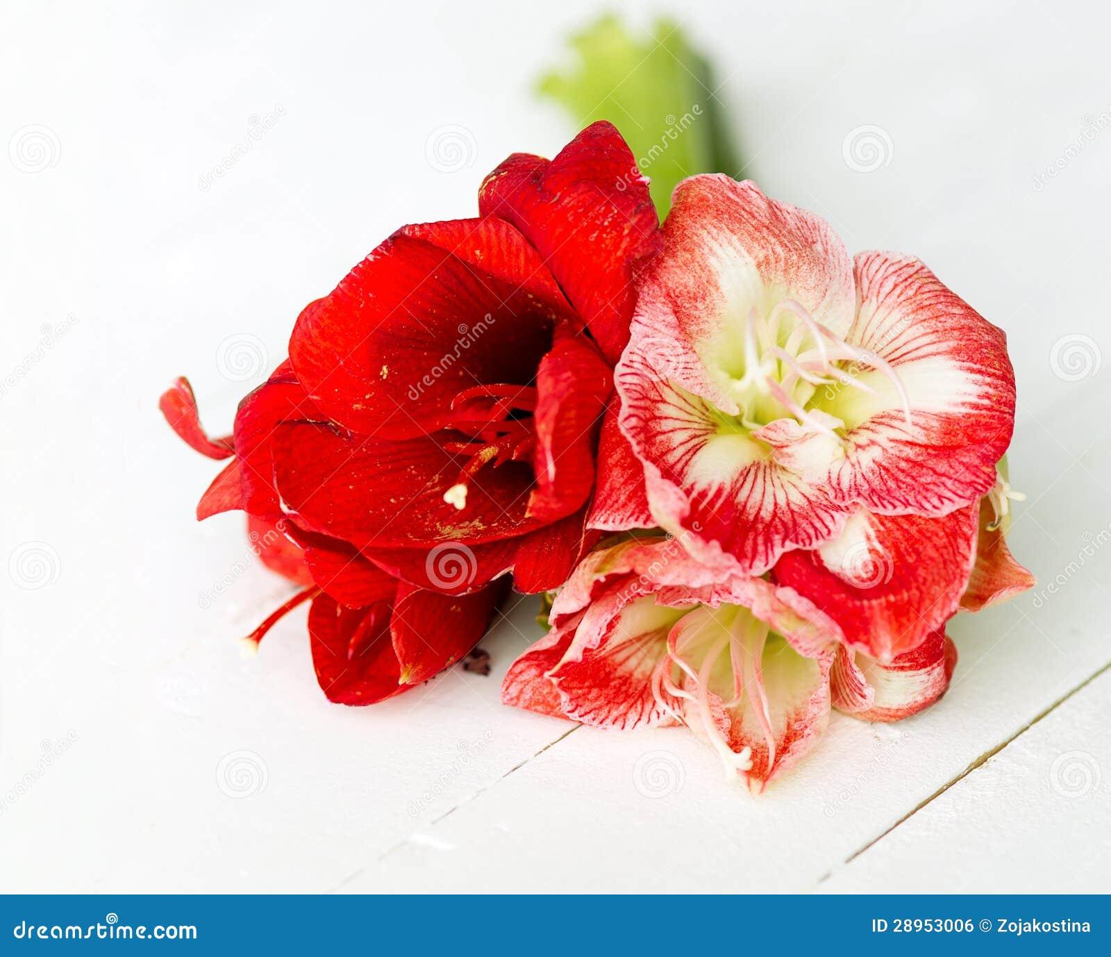 Delikatni kwiaty dla specjalnej okazi