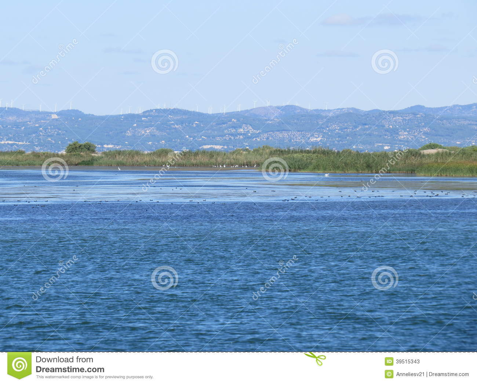 Delta del Ebro, Catalonia, Spain