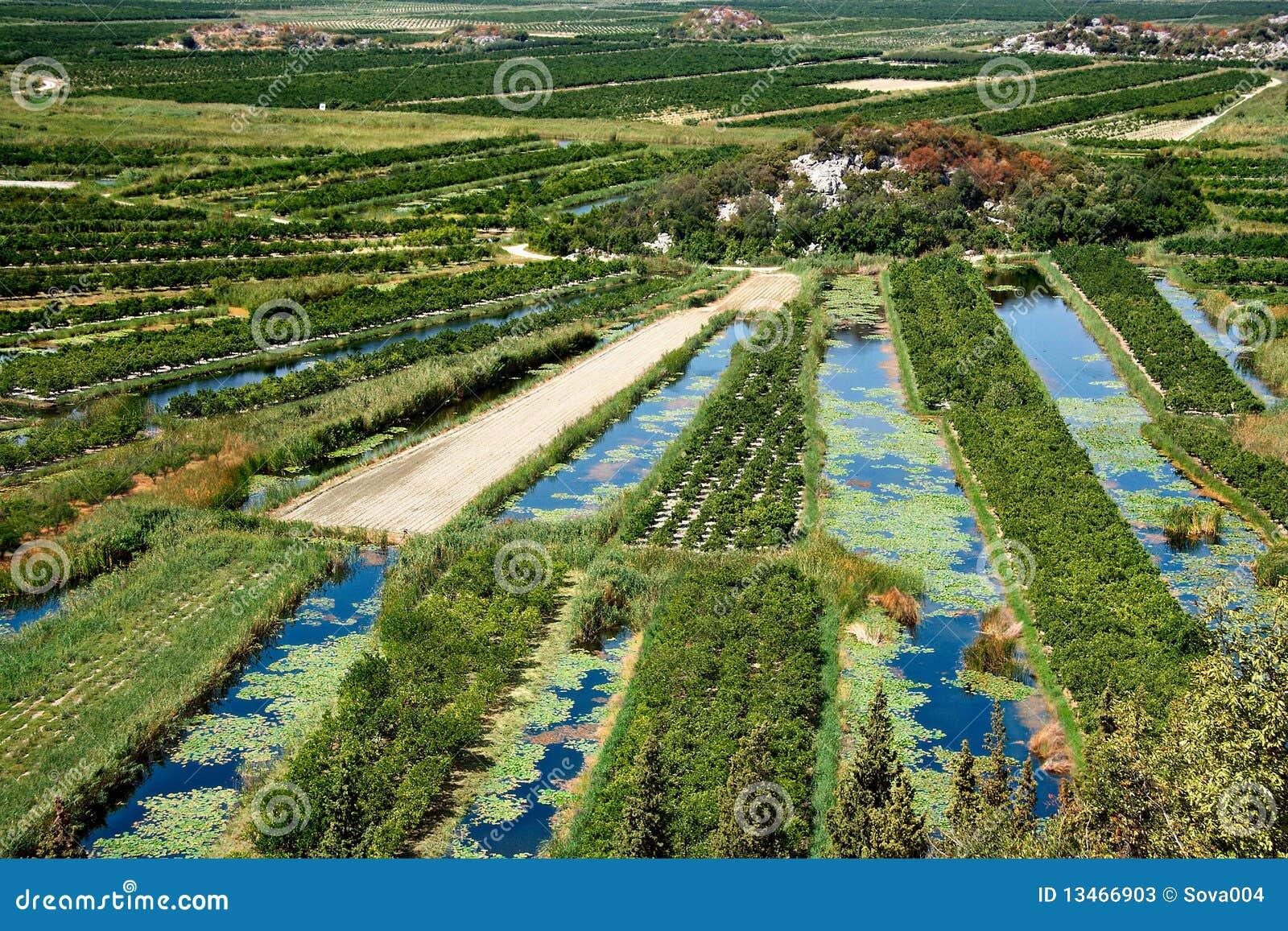 Delta del río Neretva