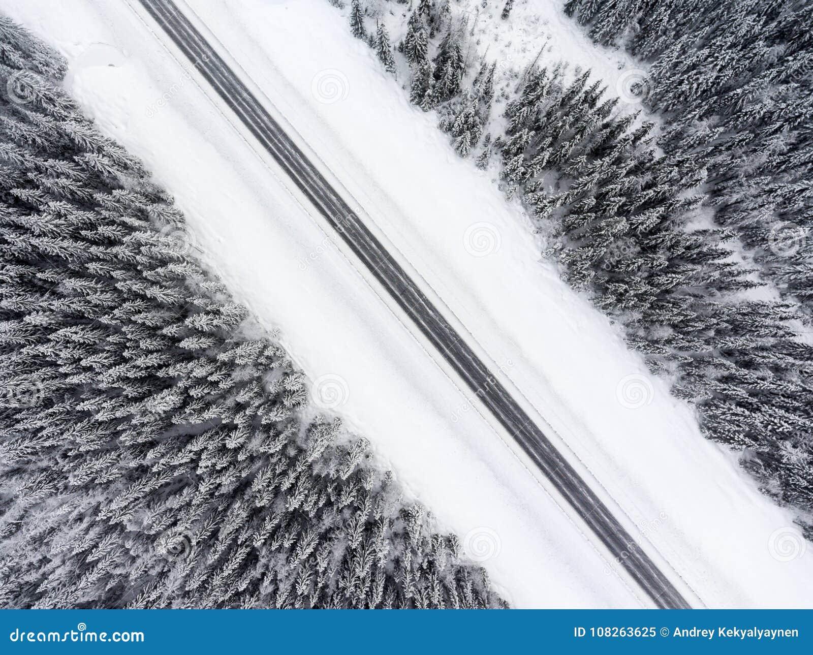 Den bästa sikten på den vintriga hala vägbortgången till och med snön täckte barrskogen