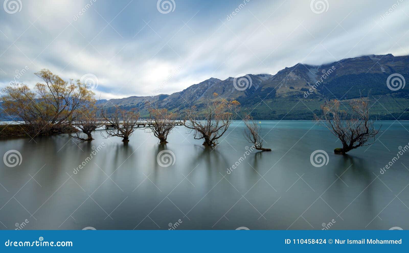 Den berömda Willow Trees av Glenorchy