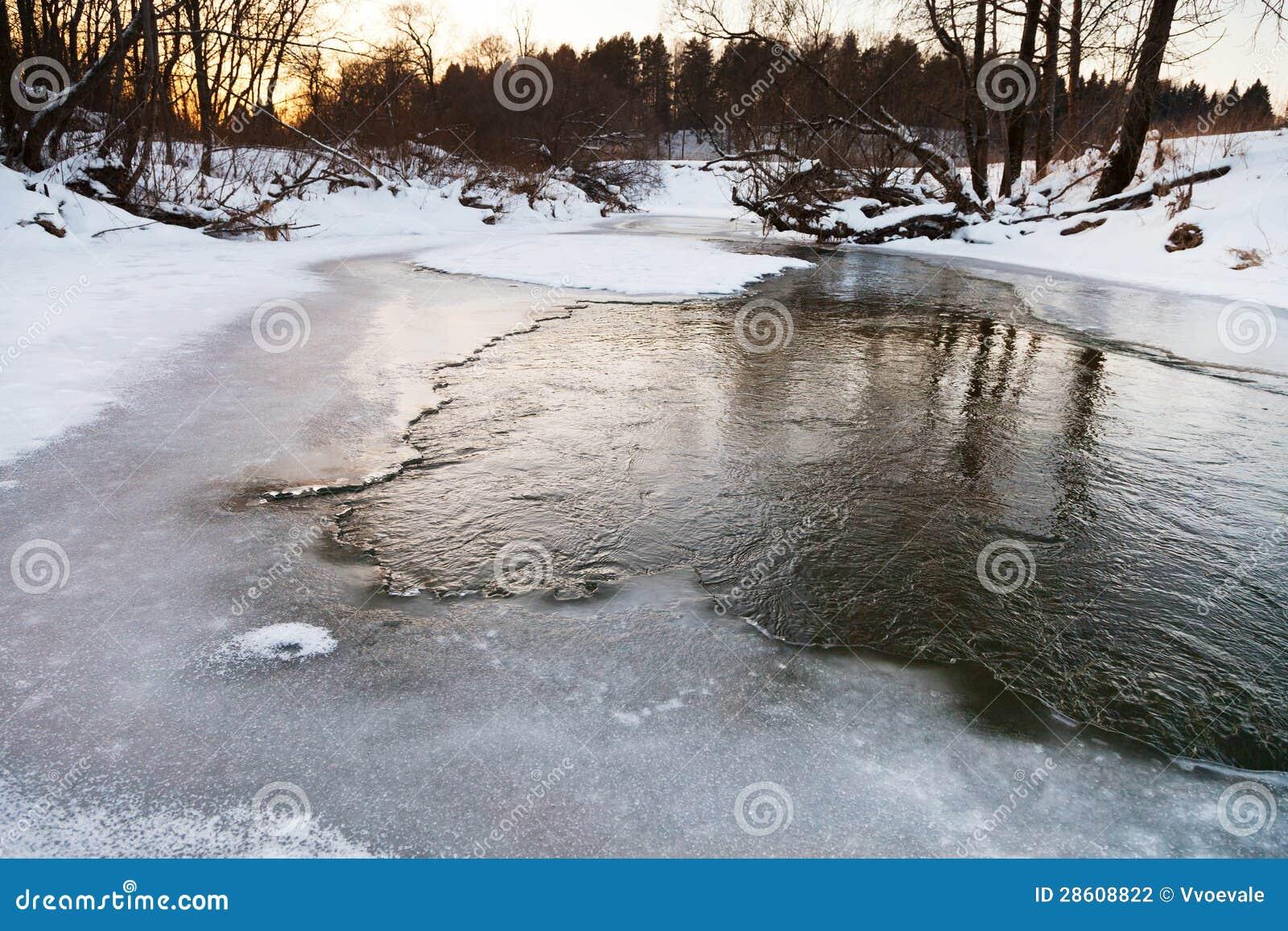 Den djupfryst flodstranden av skogen strömmer