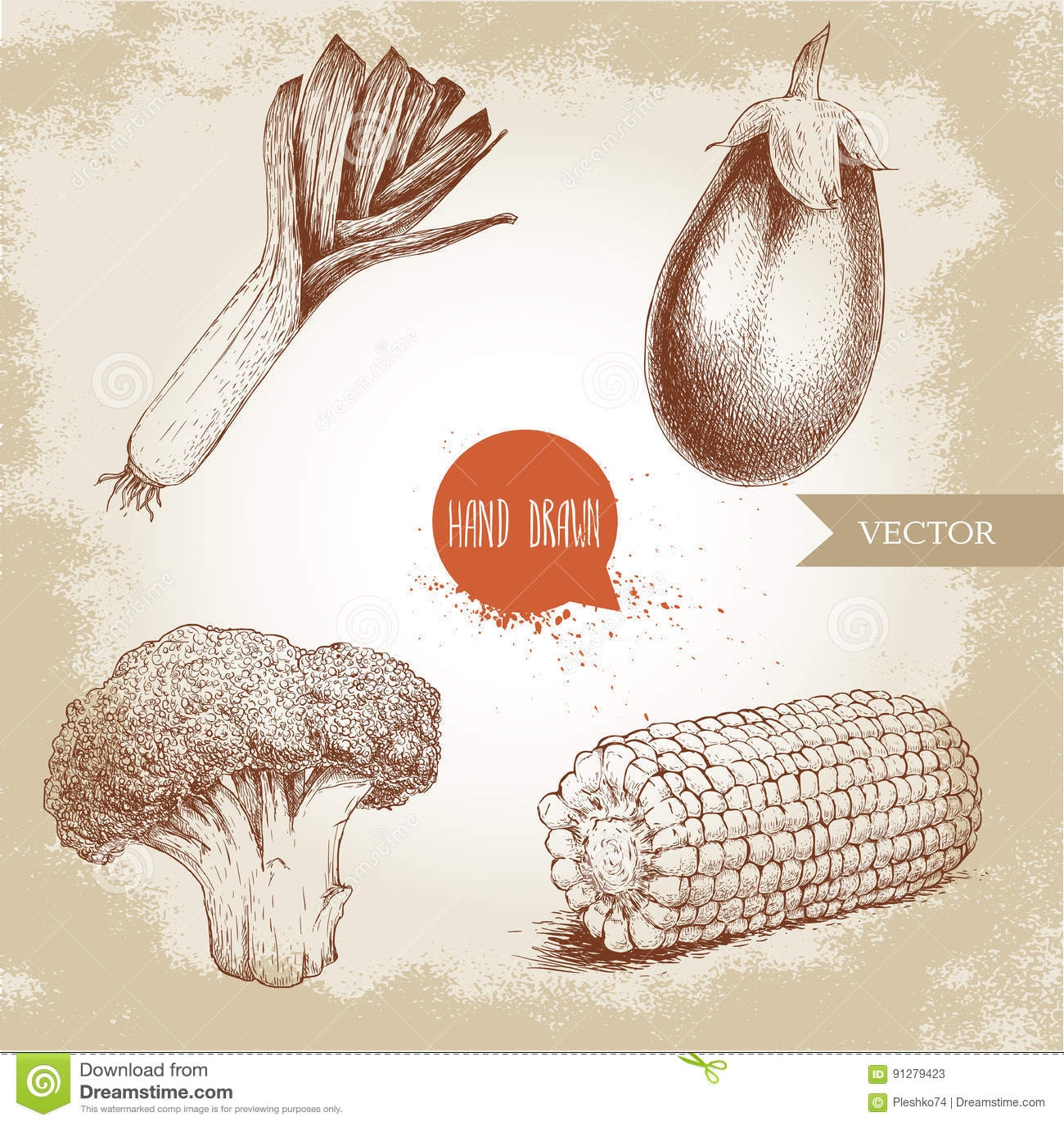 Den drog handen skissar stilgrönsakuppsättningen Purjolök, aubergine, broccoli och majsskiva Ny mat för lantgård