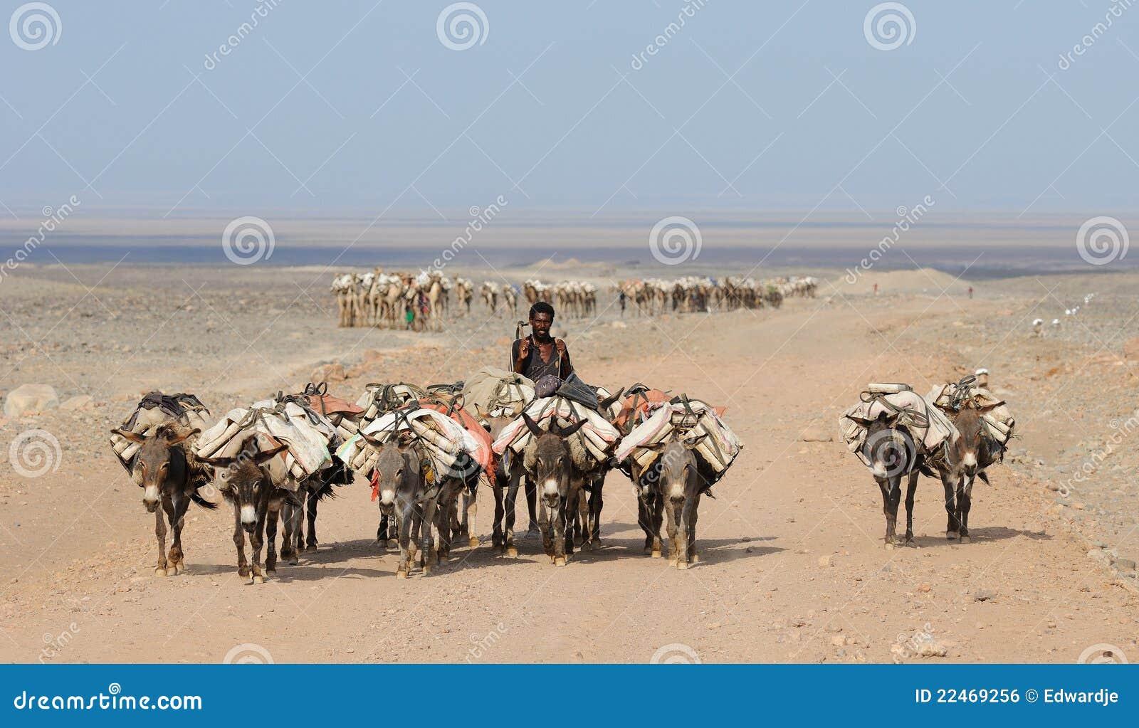 Den ethiopian husvagnen saltar
