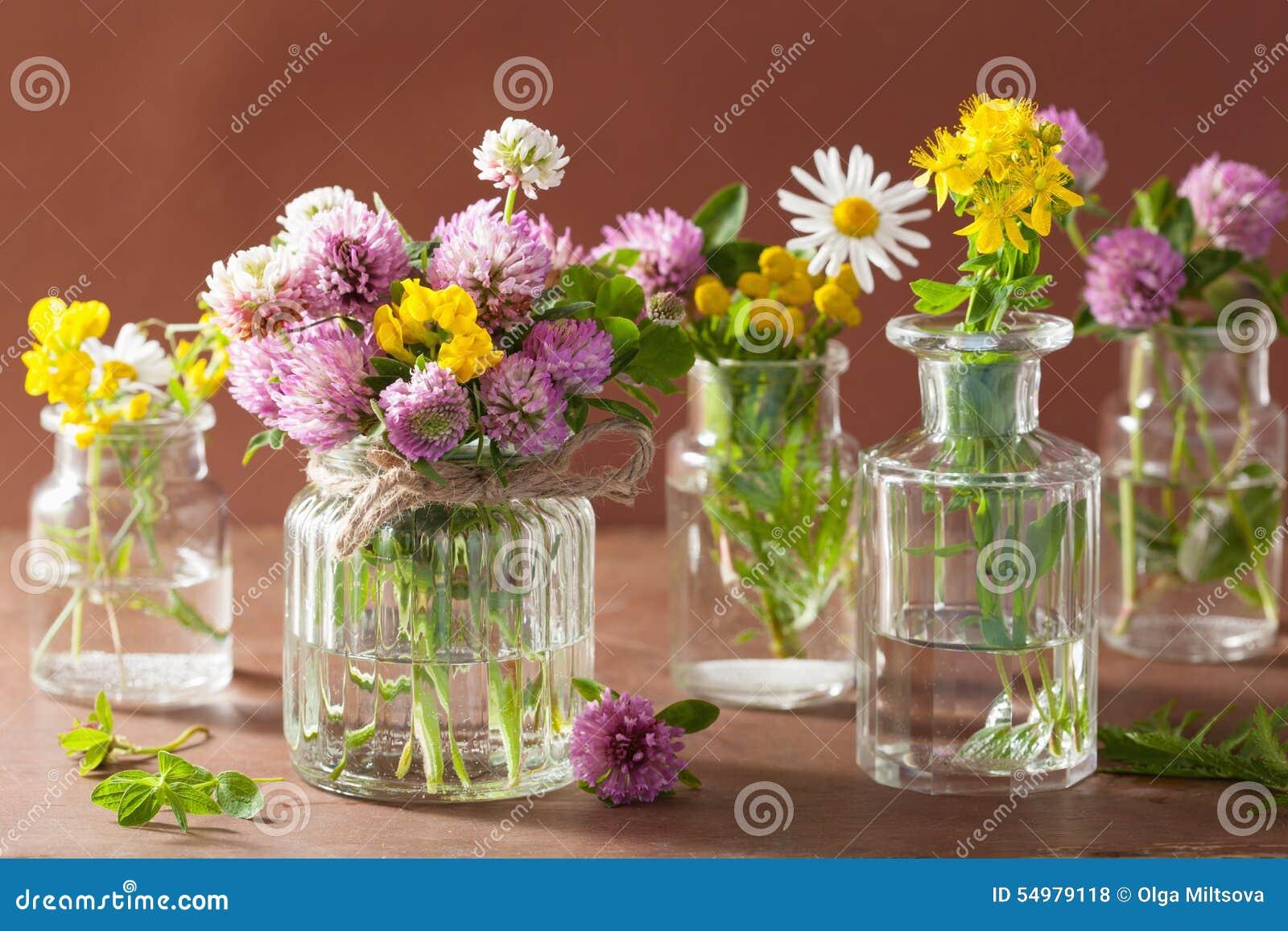 Den färgrika läkarundersökningen blommar och örter i glass krus