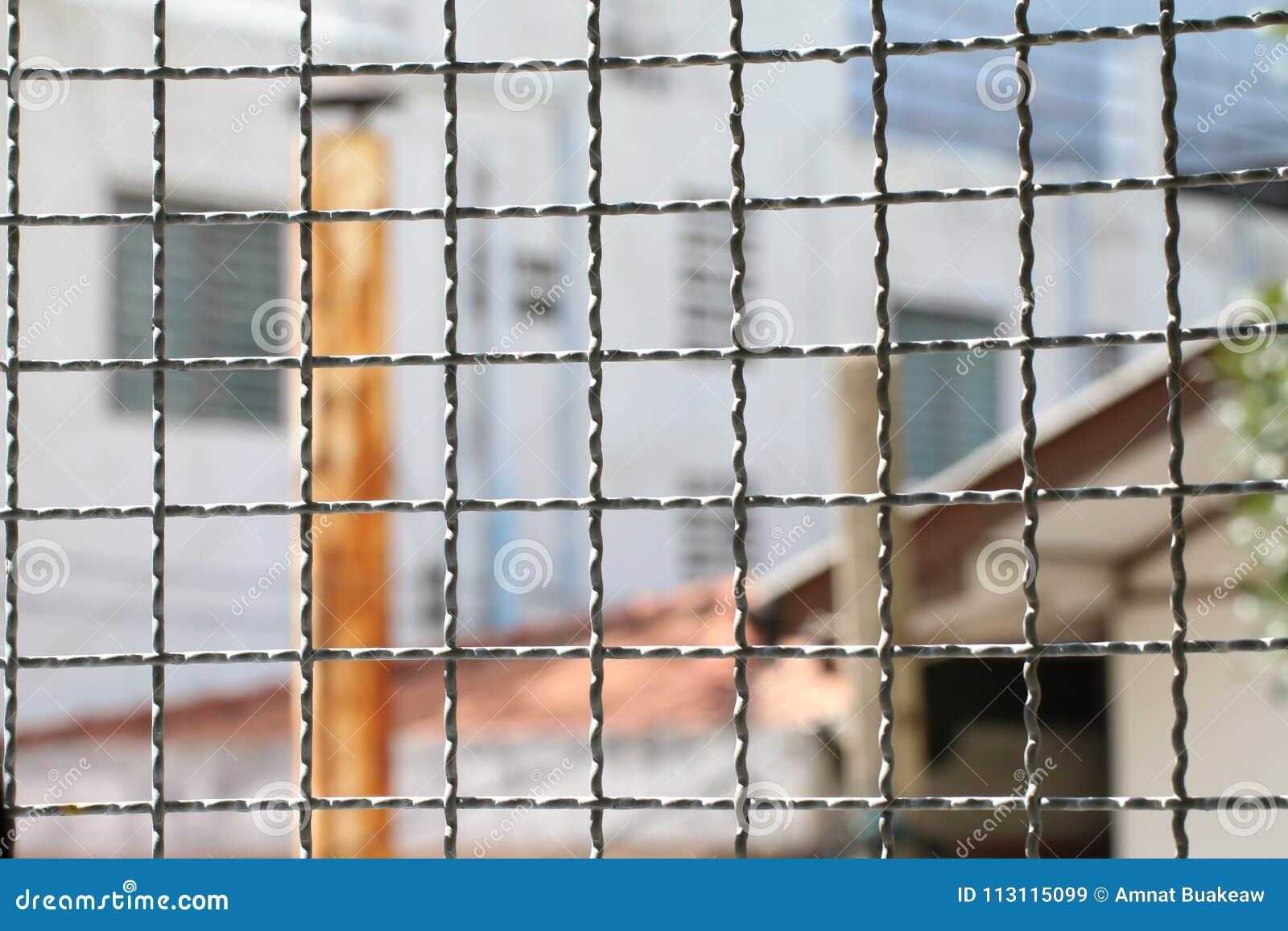 Den försåg med en hulling champinjonen - binda buren inom försening inom stålburen, staket för raster för fyrkant för metall för