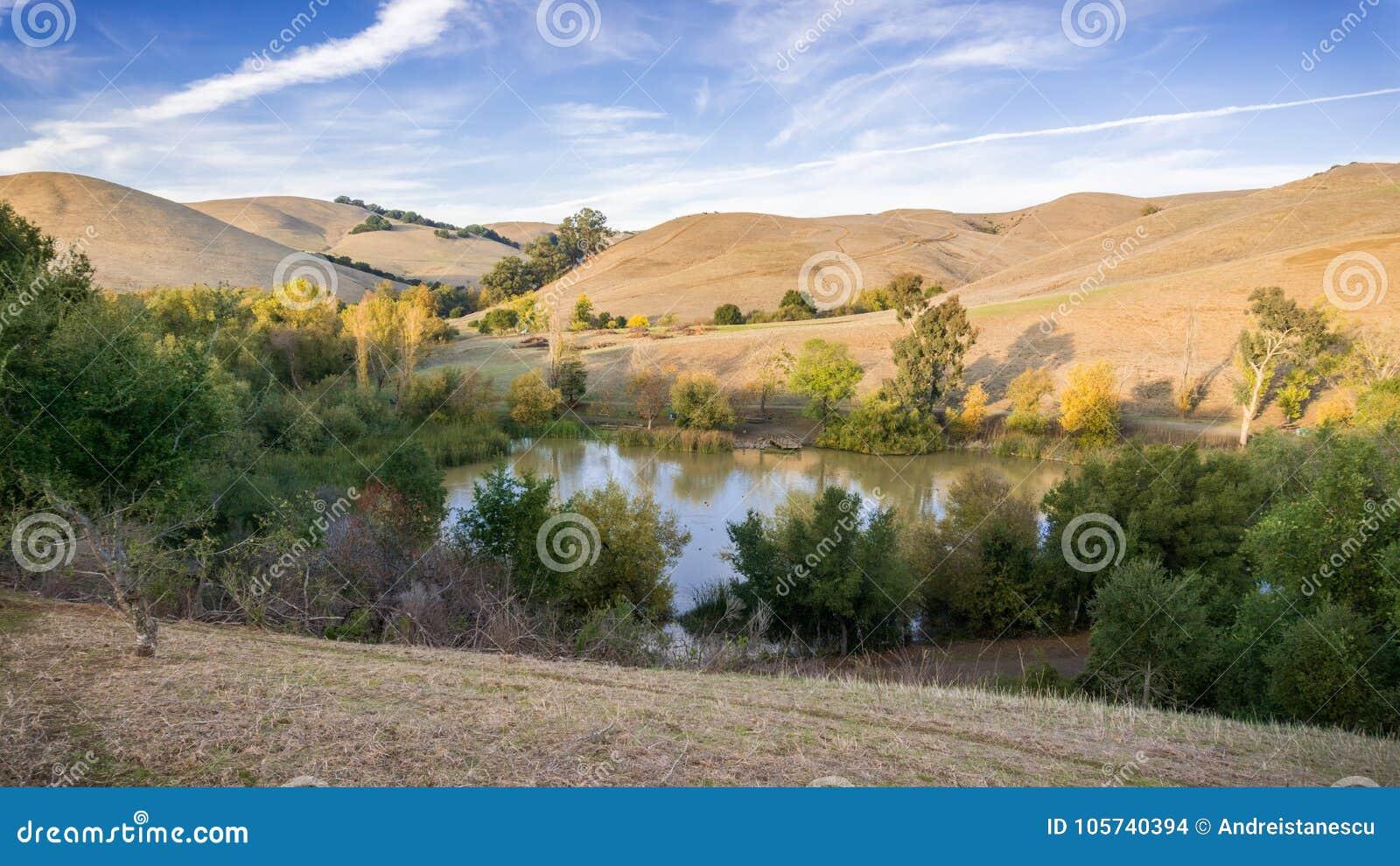 Den flyg- sikten av ett damm i Garin Dry Creek Pioneer Reginal parkerar