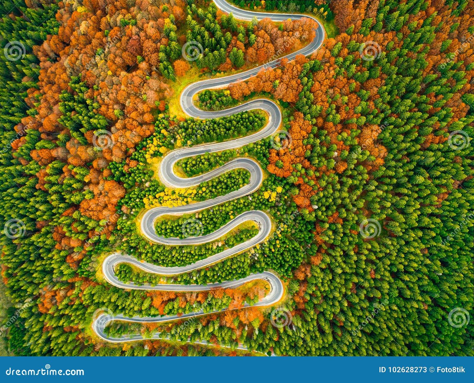 Den flyg- sikten av den slingriga vägen till och med höst färgade skogen