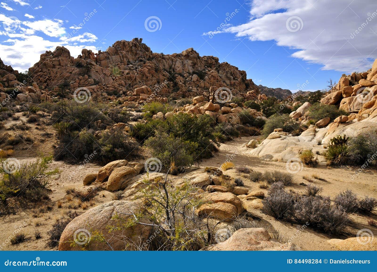 Den gömda dalen, Joshua Tree National parkerar