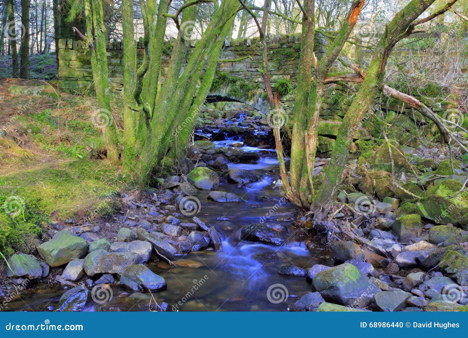 Den gamla lagledarebron över den Nant bilfloden Nant Ddu Brecon leder nationalparken