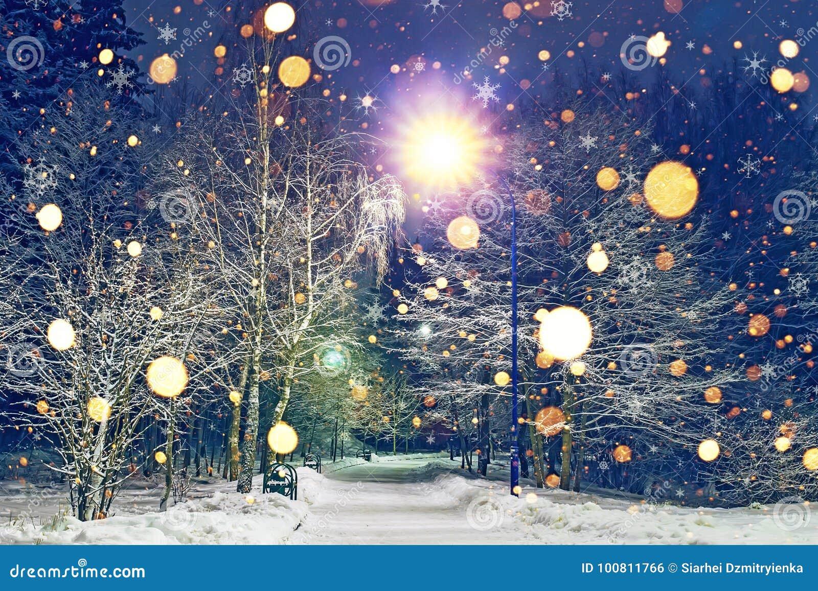 Den glödande snöflinganedgången i vinternatt parkerar Tema av jul och det nya året Vinterplatsen av natten parkerar i snö