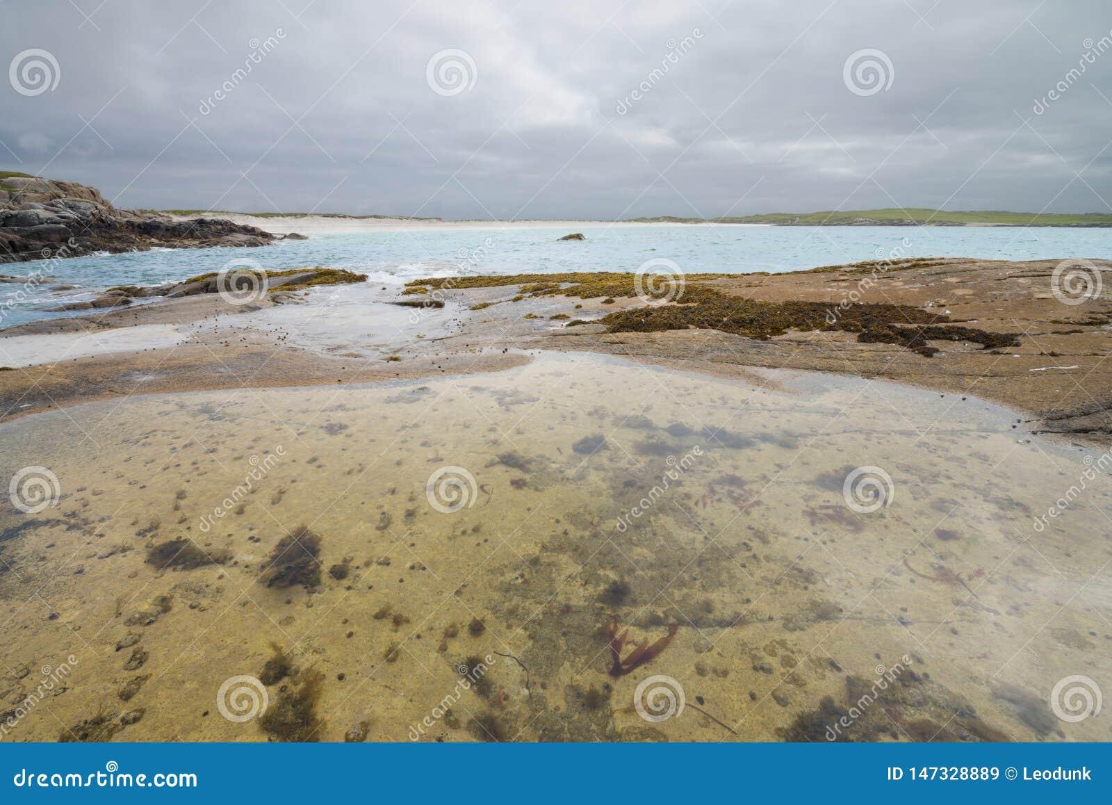 Den Glassilaun stranden och sandsten vaggar med algen på lågvatten galway ireland