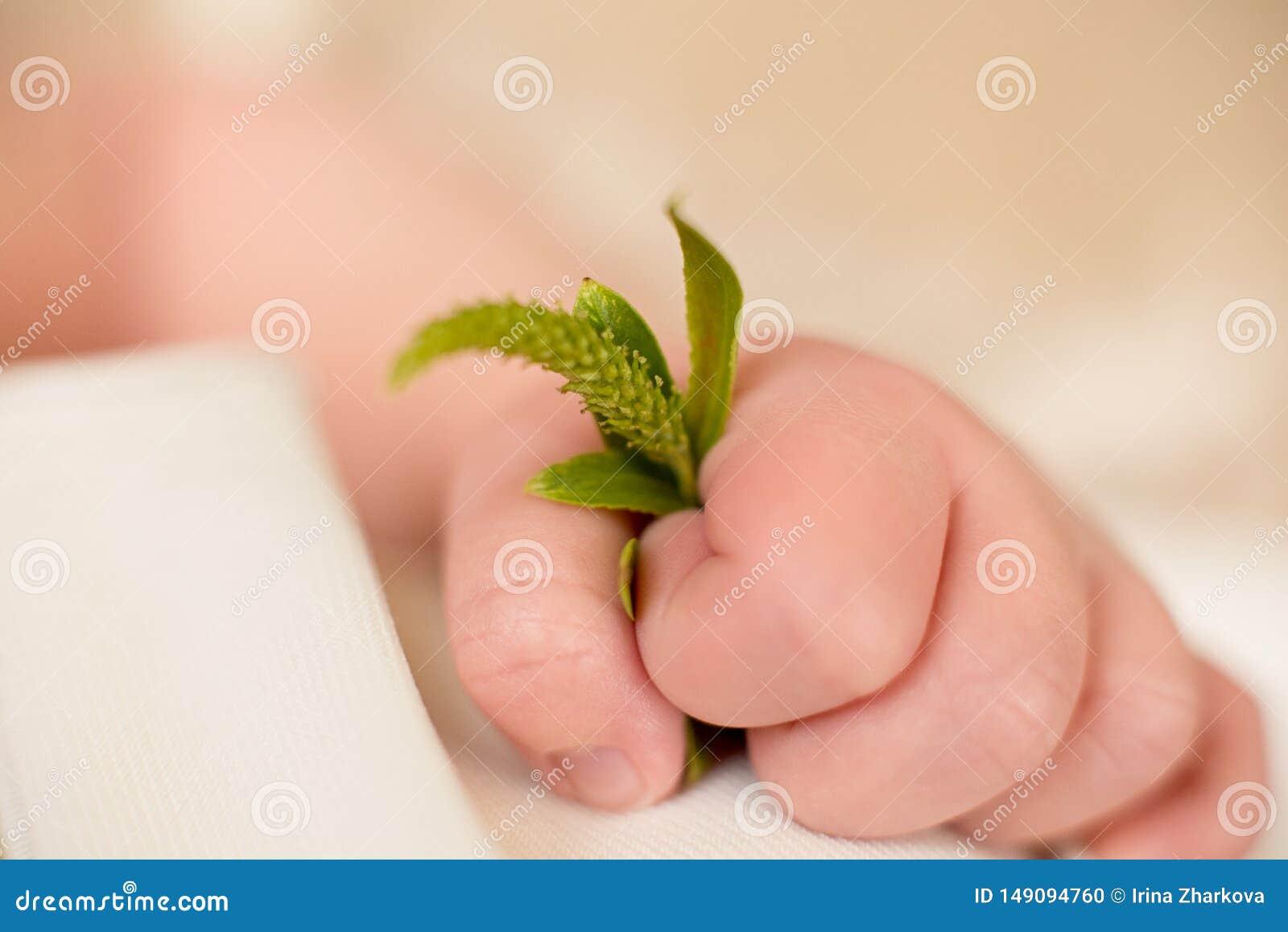 Den gr?na v?ren fattar i handen av ett nyf?tt barn, b?rjan av liv, v?ren som v?cker, v?r