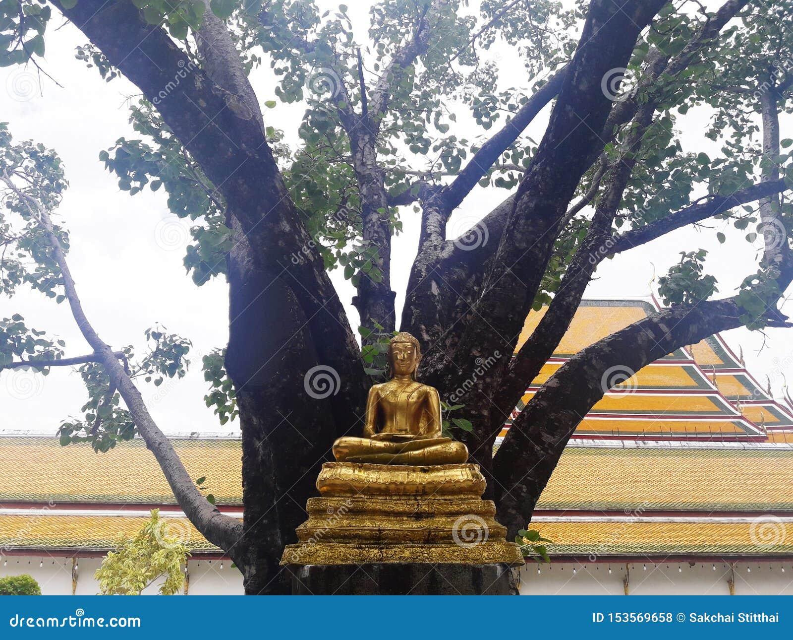 Den guld- Buddhastatyn i Bangkok, Thailand