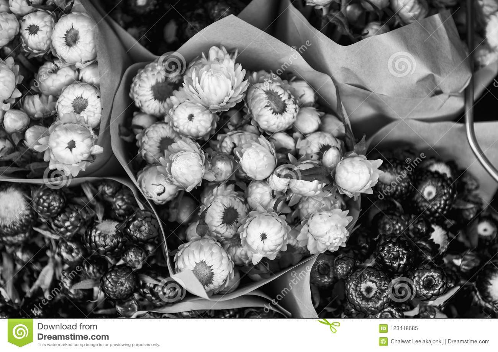 Den härliga blomman shoppar in