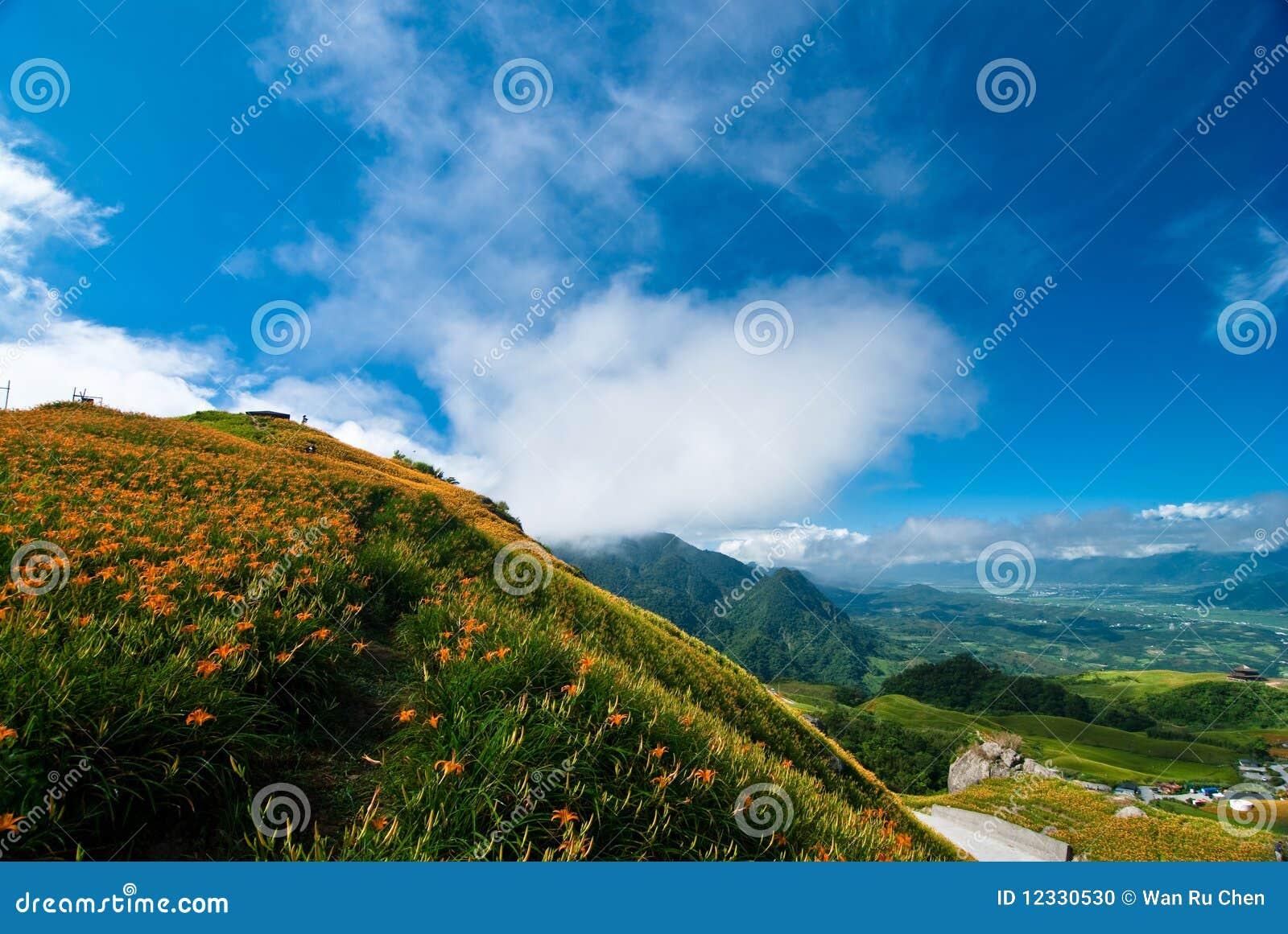 Den härliga cloudscapefältblomman våldtar