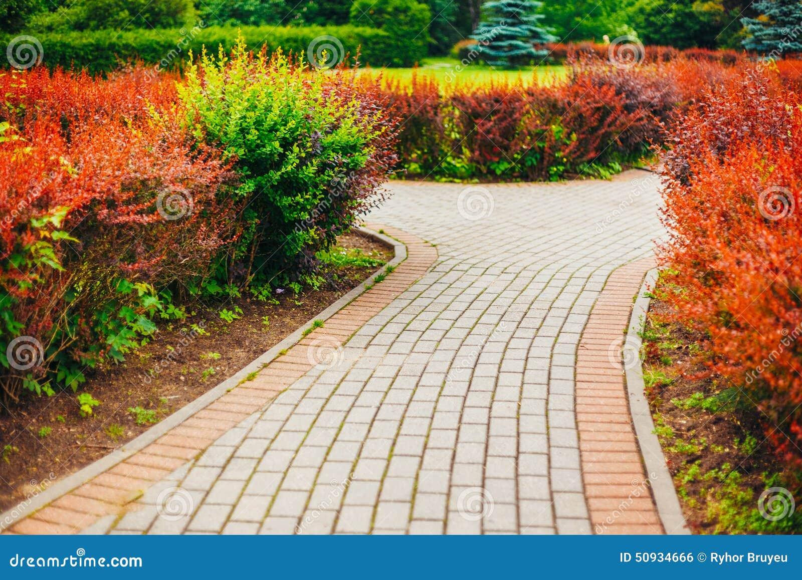 Den härliga gränden parkerar in Trädgårds- landskap design