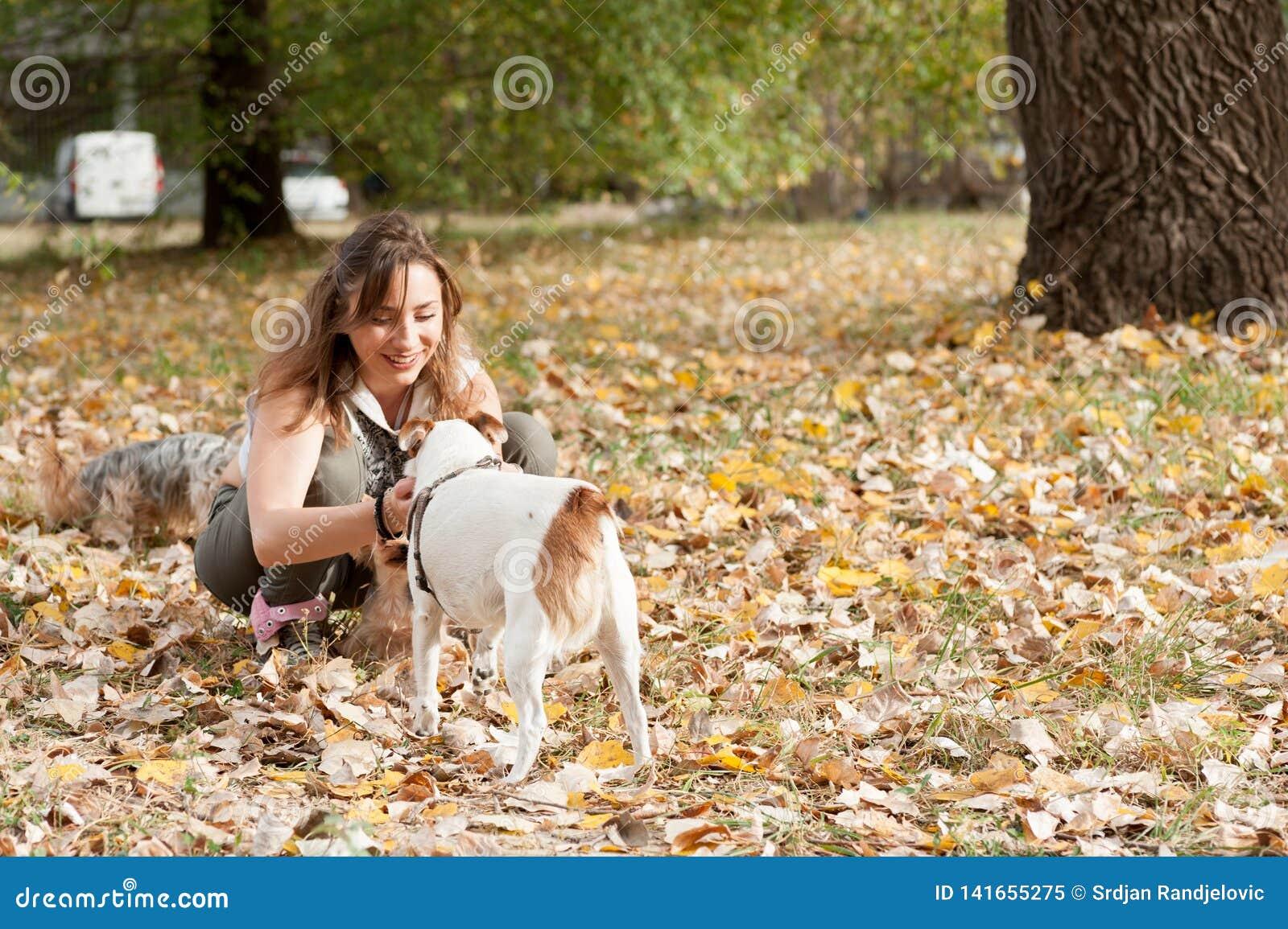 Den härliga unga flickan med hennes valp för hunden för den Yorkshire terriern som tycker om och spelar i höstdagen i, parkerar d