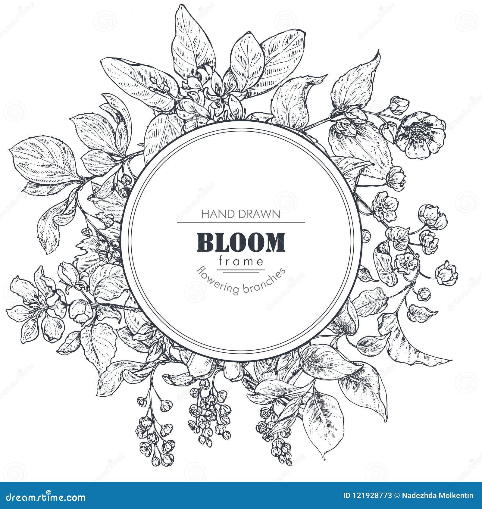 Den härliga vektorramen med den drog handen förgrena sig, blommar och växter