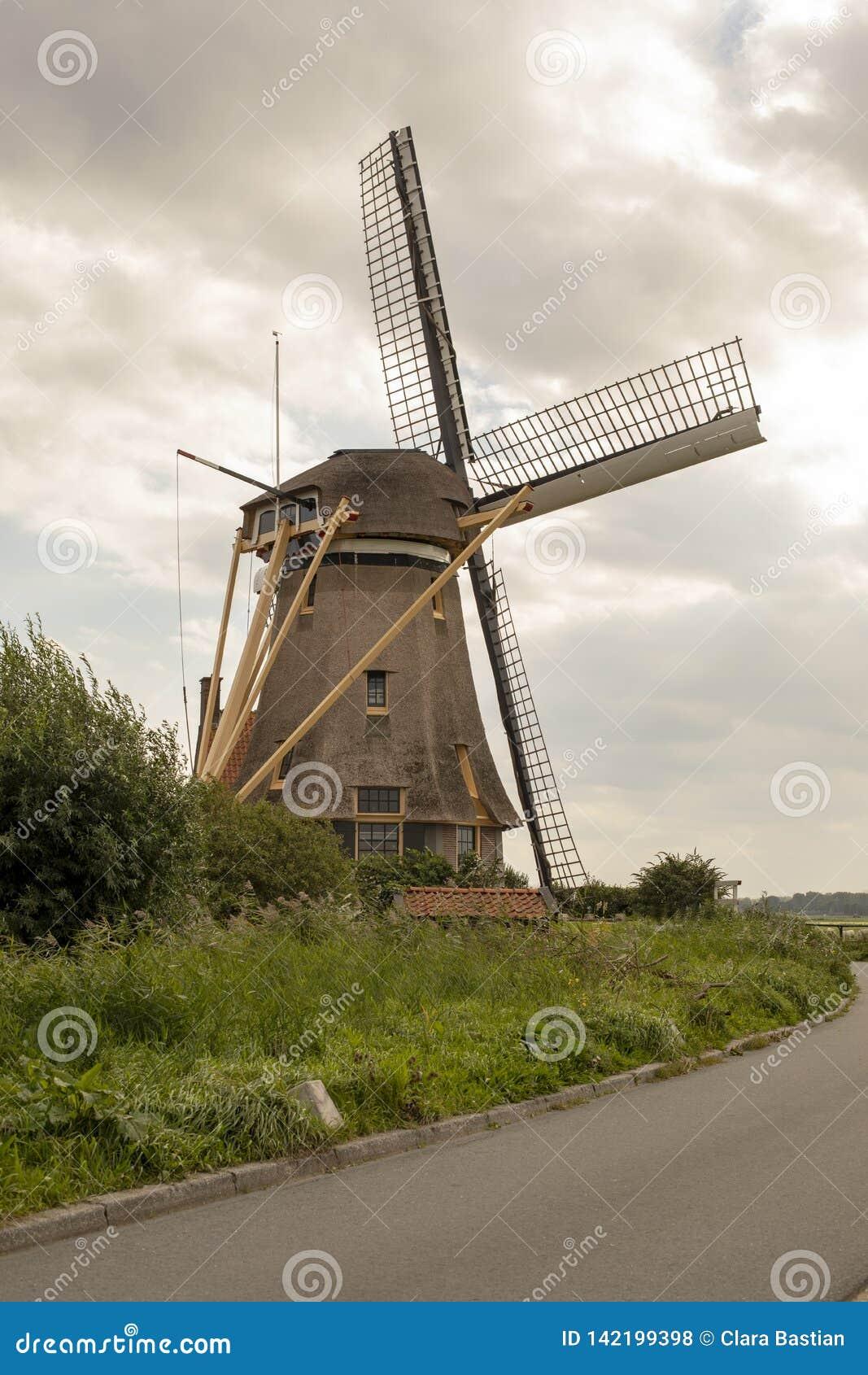 Den holländska väderkvarnen med jättelikt maler blad runt om hörnet av vägen