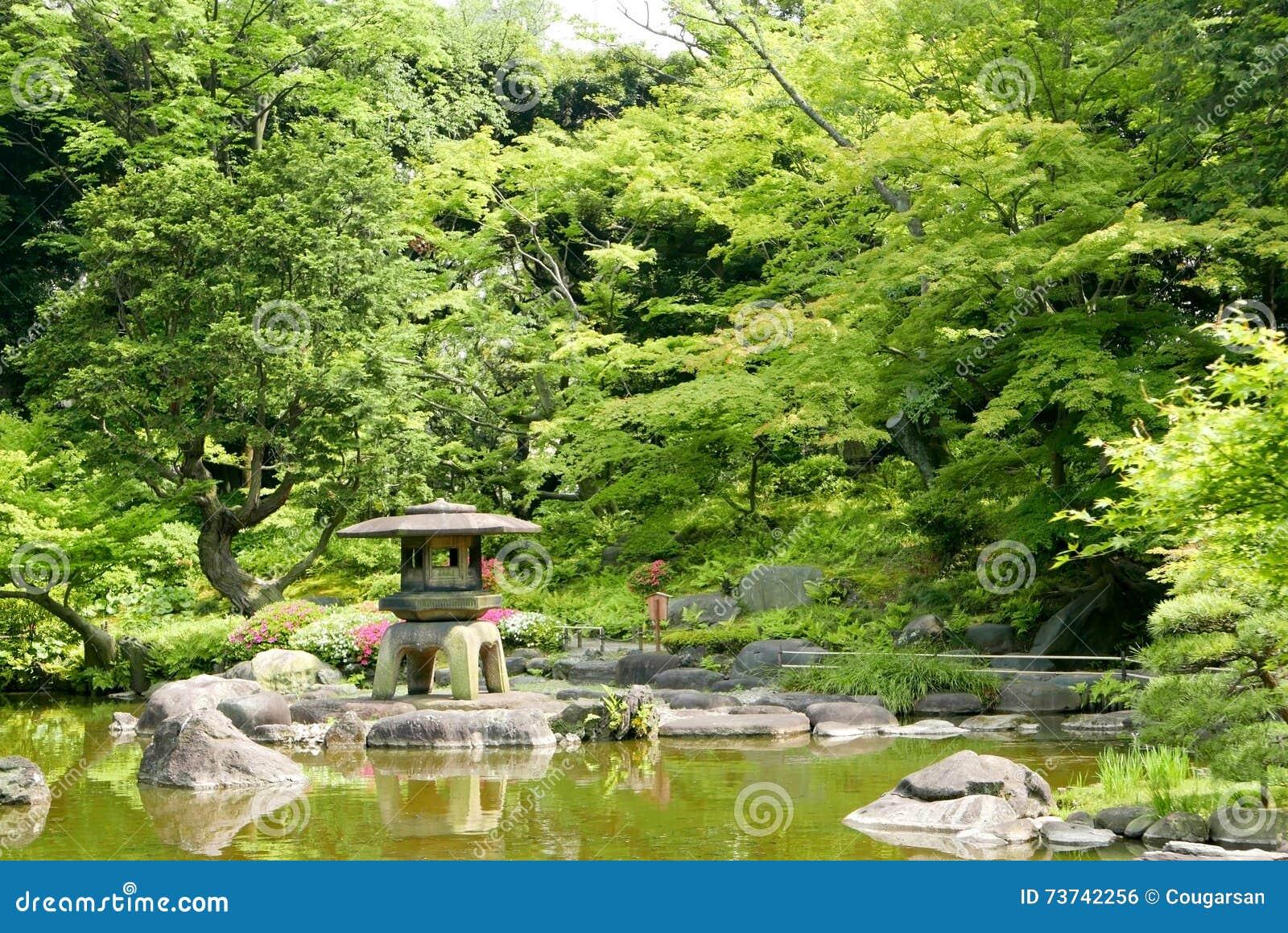 japanska växter utomhus