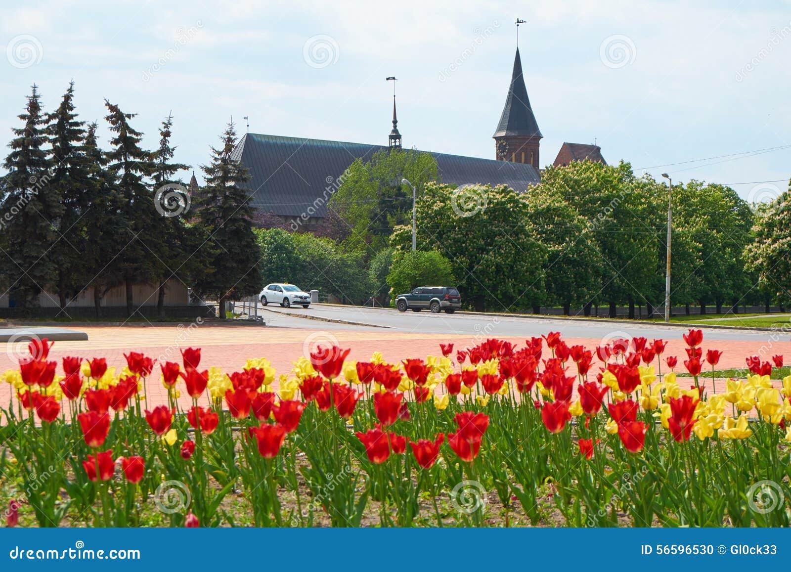 Den Kenigsberg domkyrkan är det huvudsakliga symbolet av staden Kaliningrad