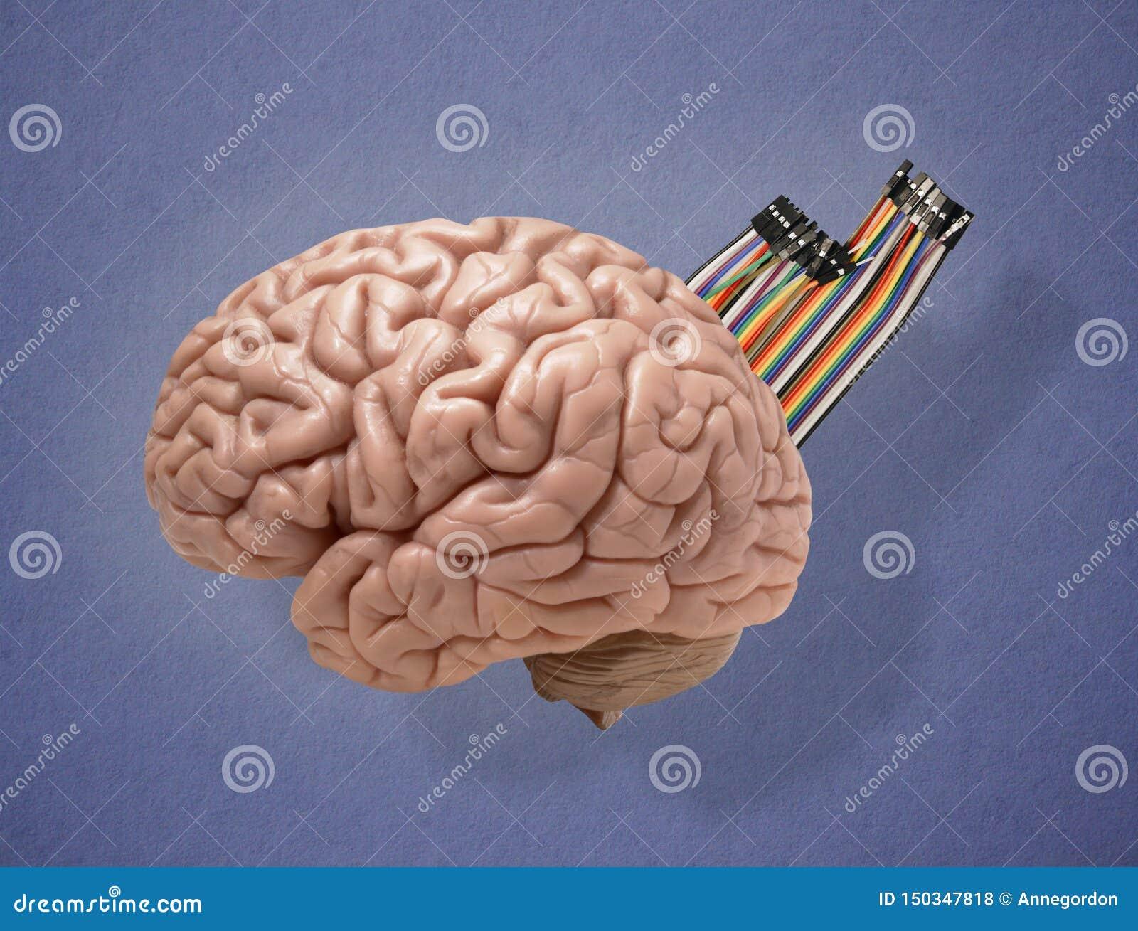 Den konstgjorda hj?rnan circuits mainboard f?r elektronisk intelligens f?r begrepp ?ver