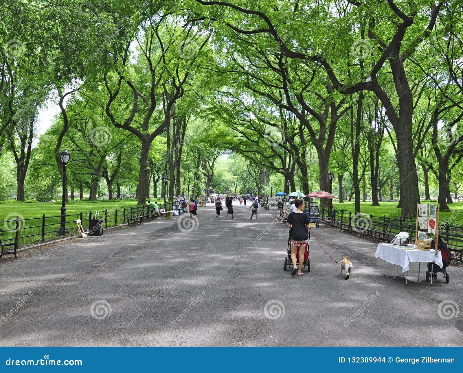 Den litterära Central Park går