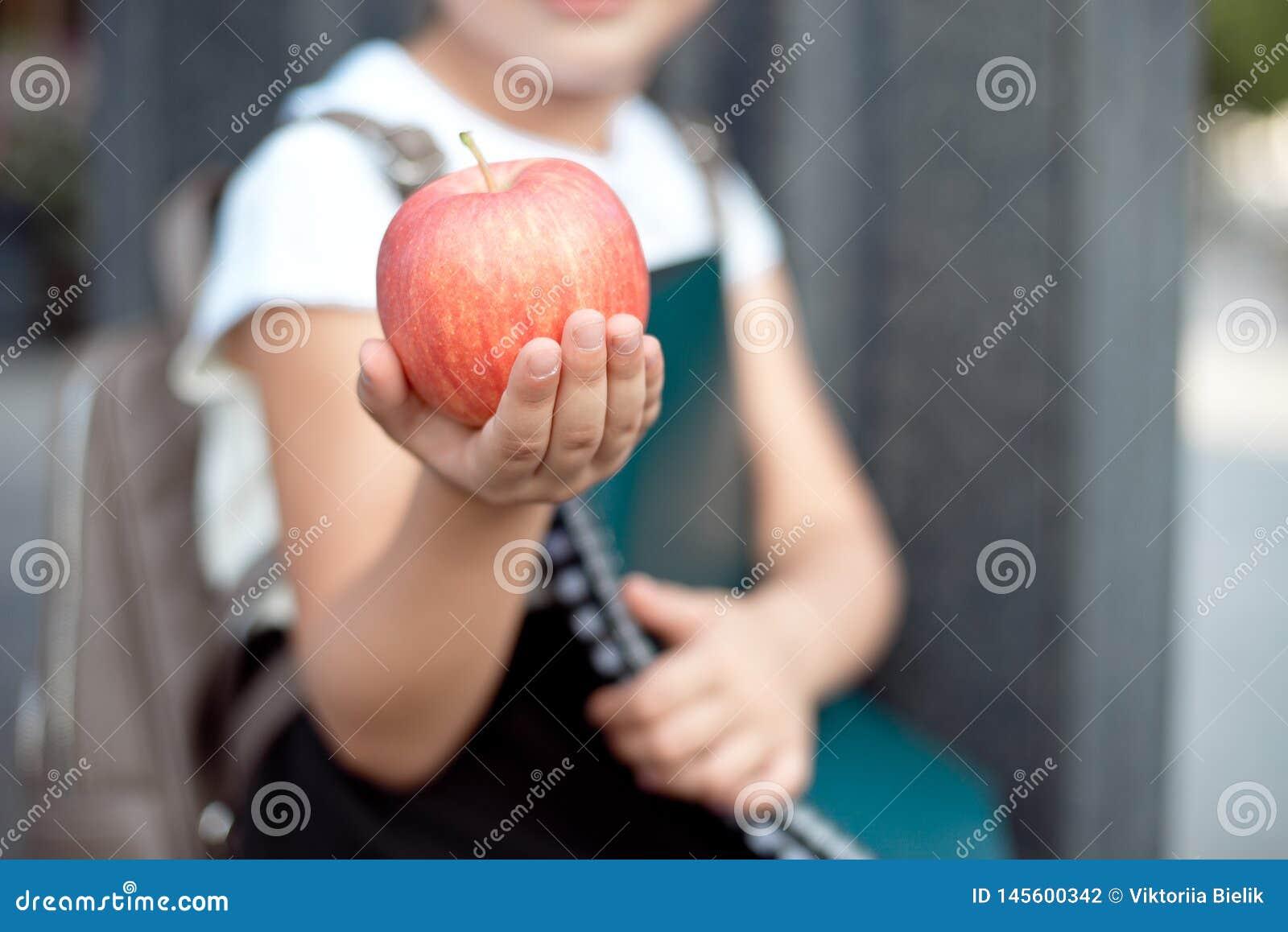 Den lyckliga lilla skolflickan med blont h?r i skolalikformig med lunch, bok sitter n?ra skola