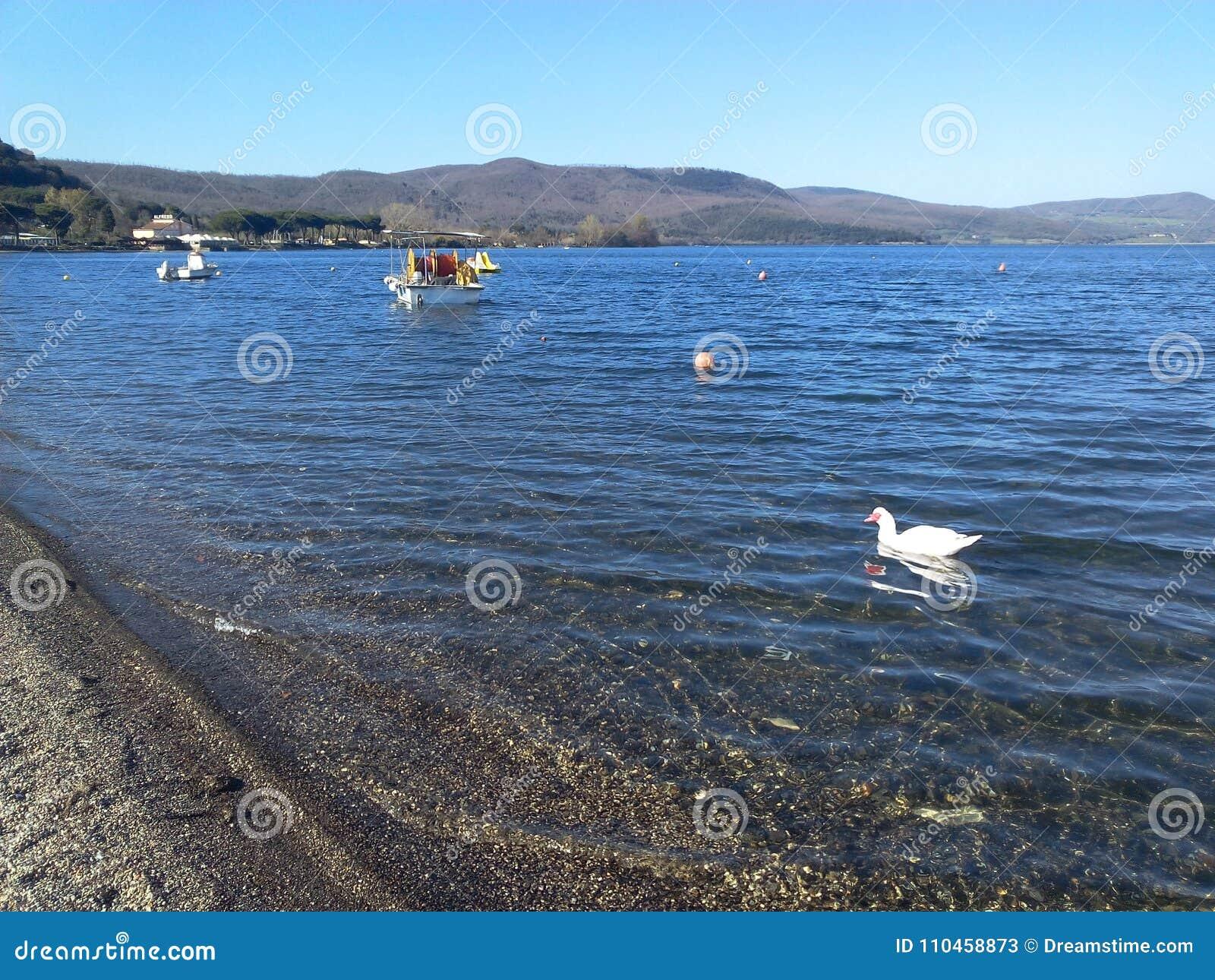 Den pittoreska sjön Bracciano i Italien