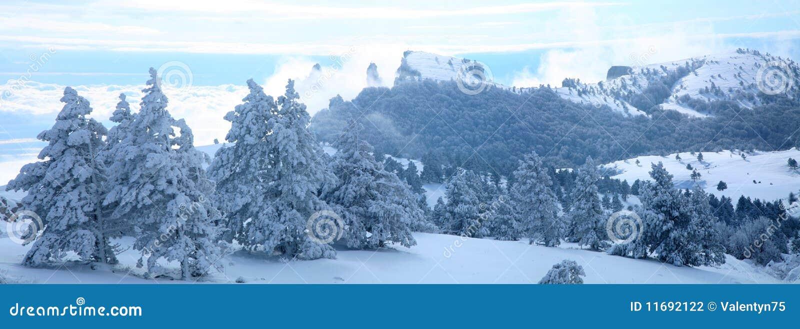 Den räknade ligganden sörjer vinter