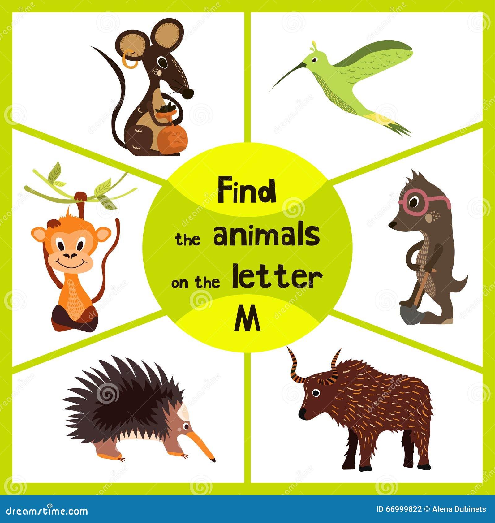 Den roliga lärande labyrintleken, finner all 3 gulliga vilda djur med bokstaven M, fältmusen, den tropiska macaqueapan och kryp-a