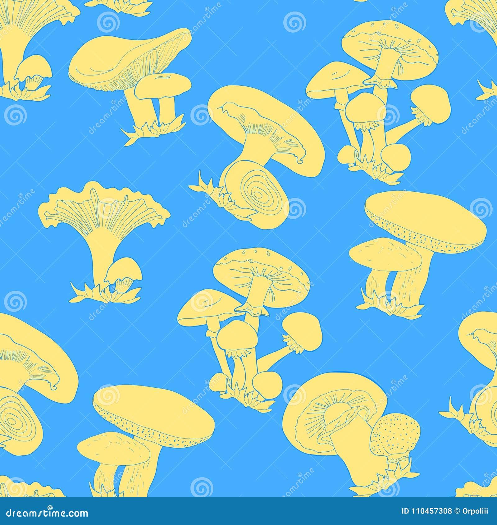 Den sömlösa modellen plocka svamp russulaen, kantarellen, champignonen, gr