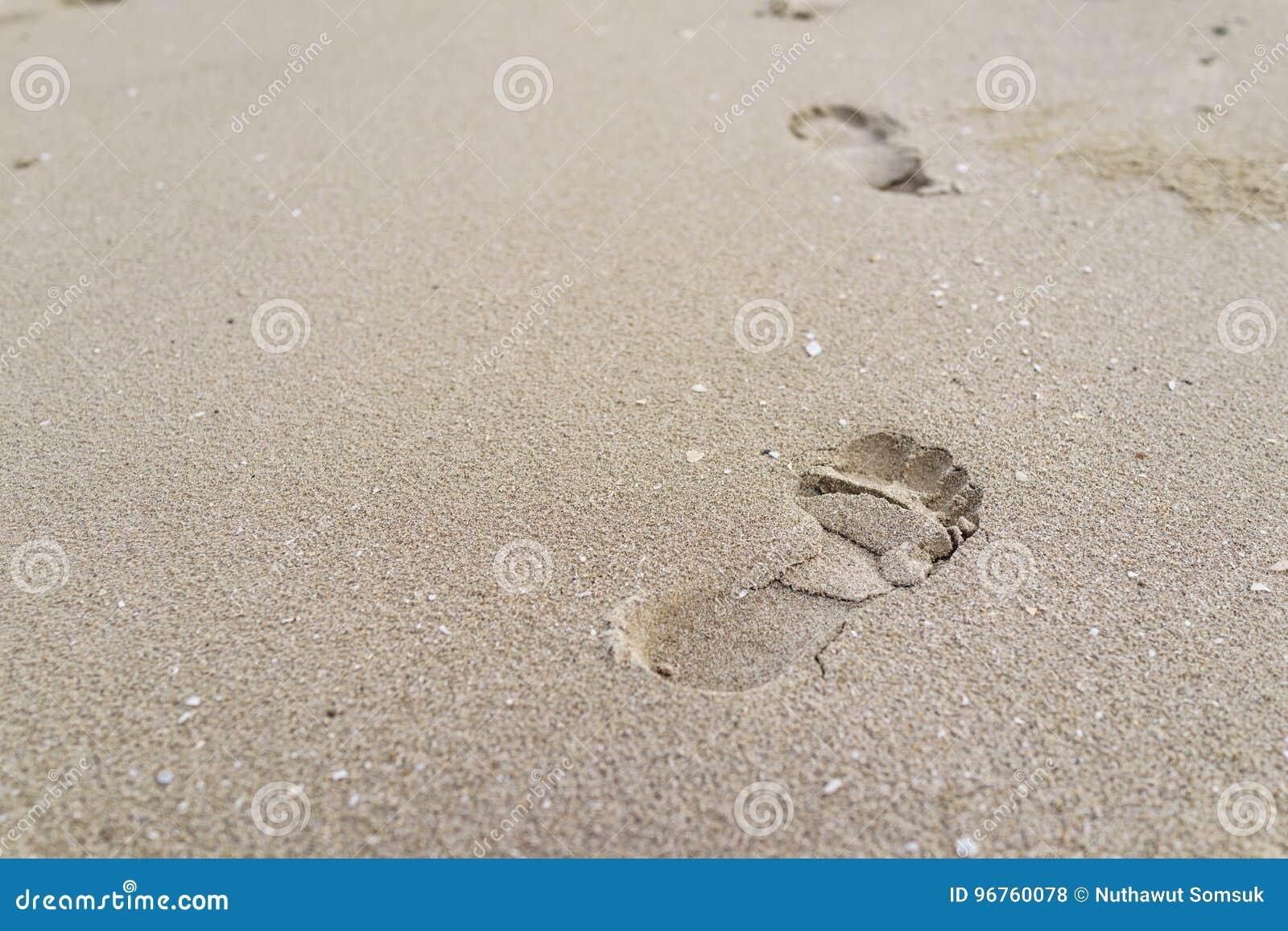Den selektiva fokusen på stort fotspår på sanden som livresa lurar