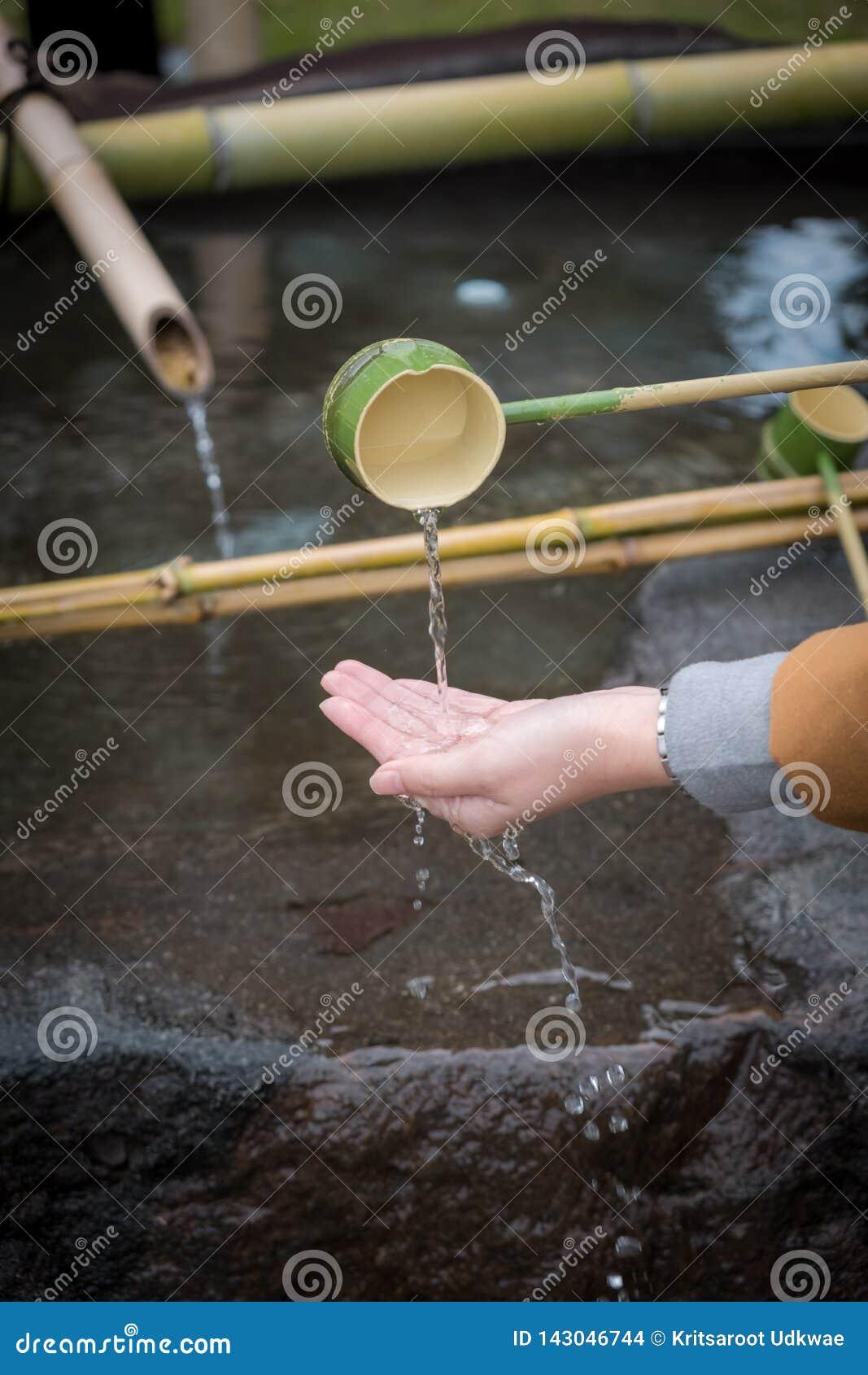 Den Shinto Omairien som rentvår ceremoni, genom att använda vatten i bambuskopa, skriver in för till templet i Japan
